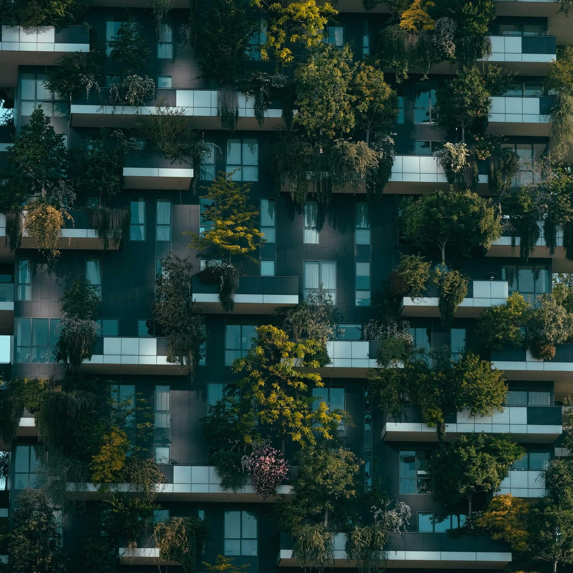 Apartment block with plants and trees growing on balconies.