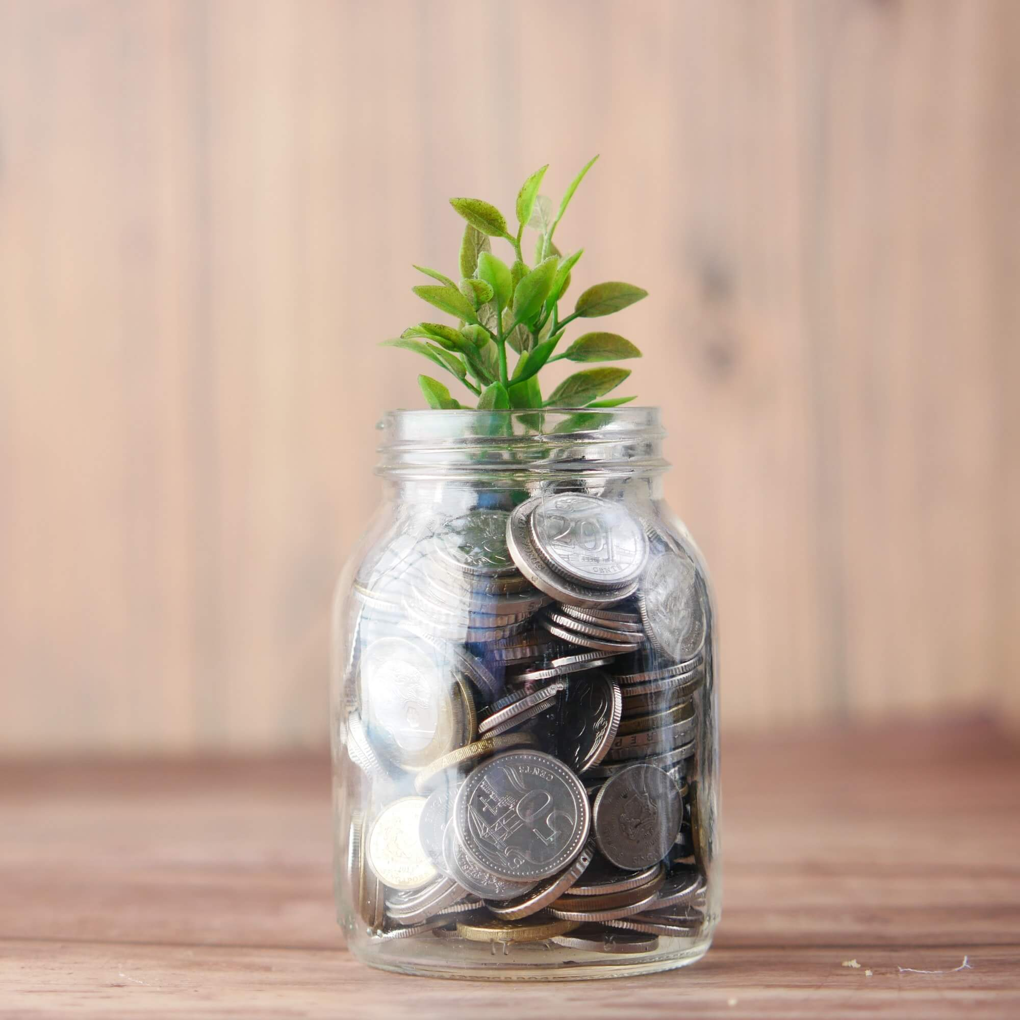 A jar containing silver coins, a plant is sprouting out of the top of the jar.