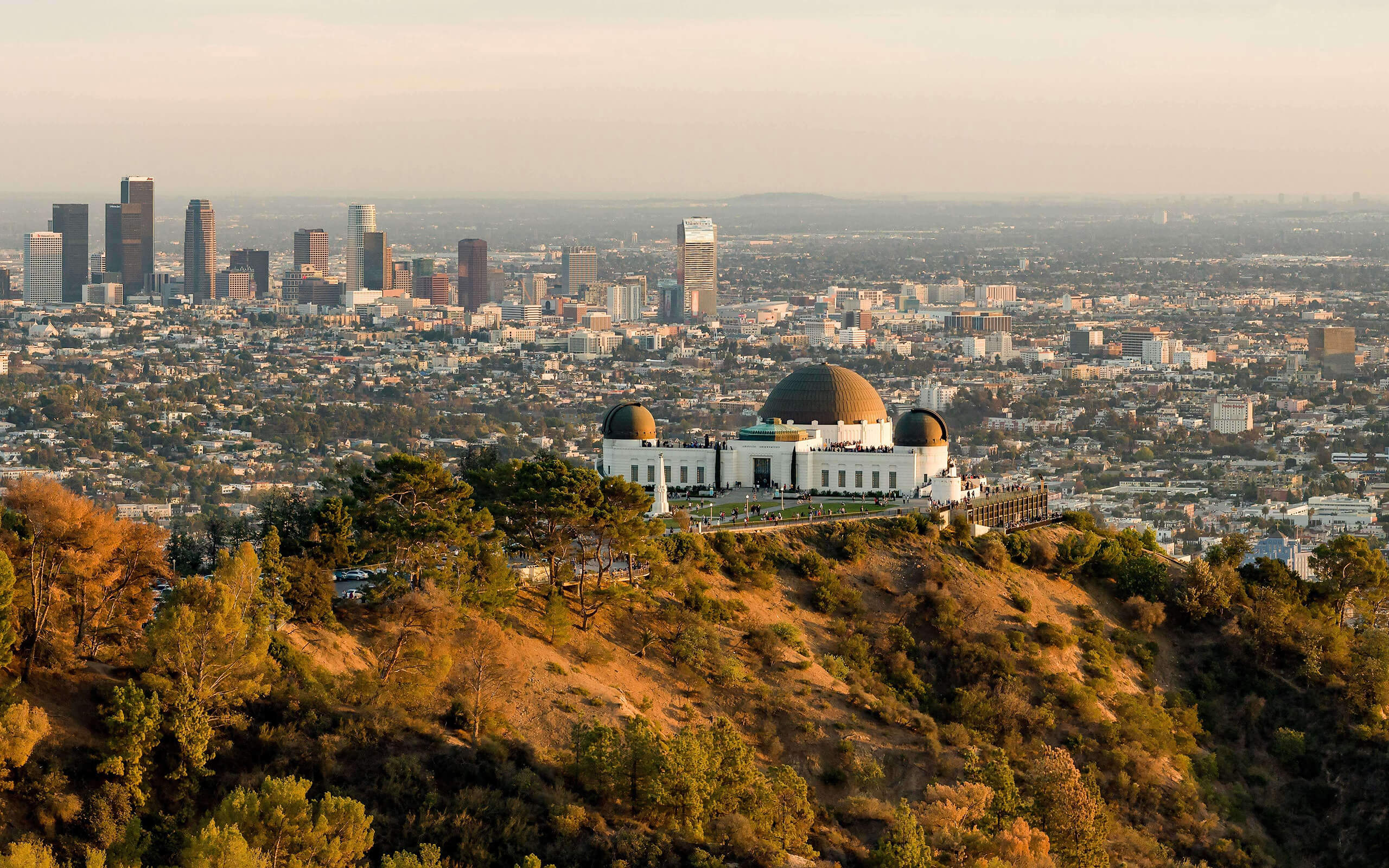 An aerial view of Los Angeles