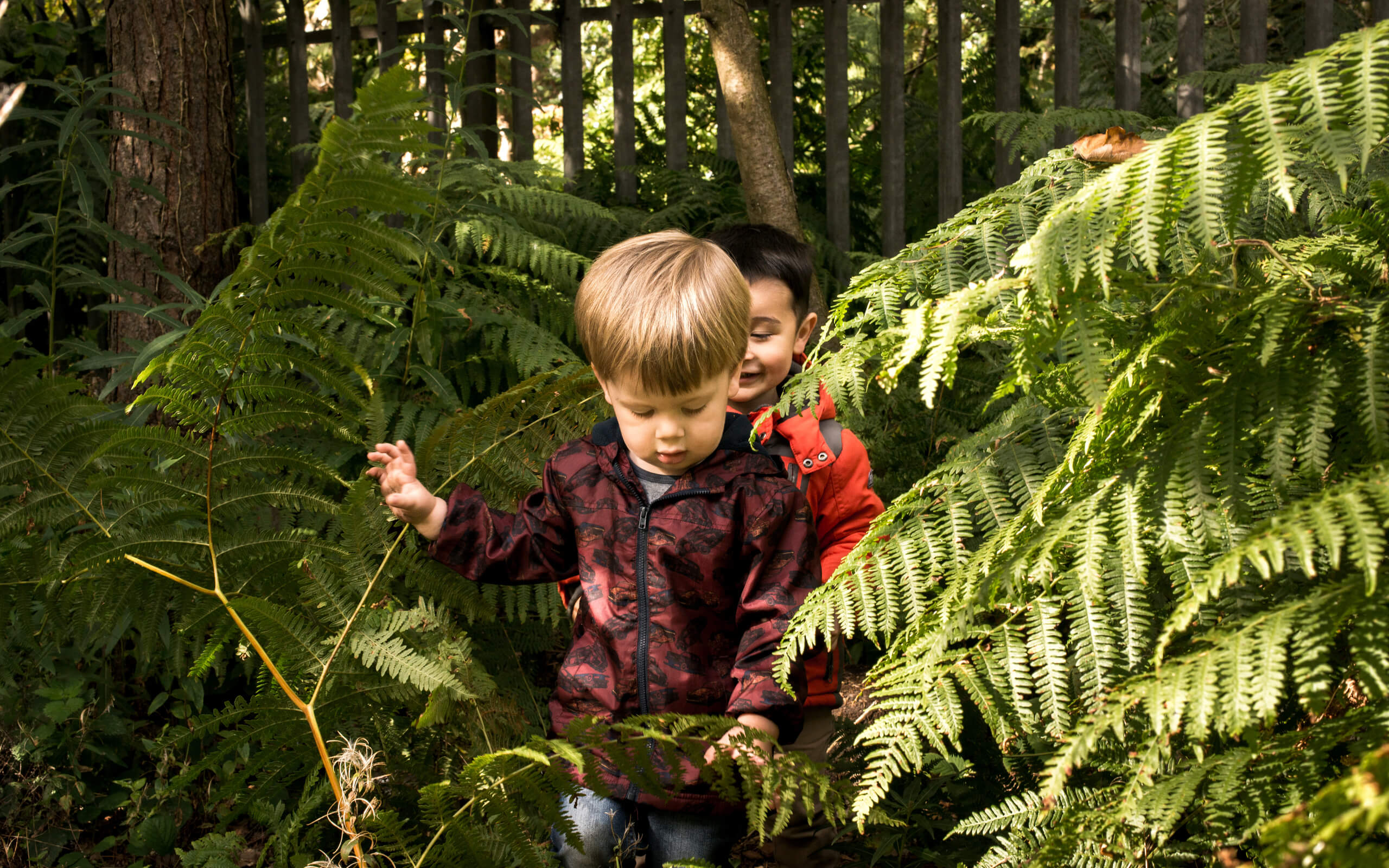 Children playing in a forest area
