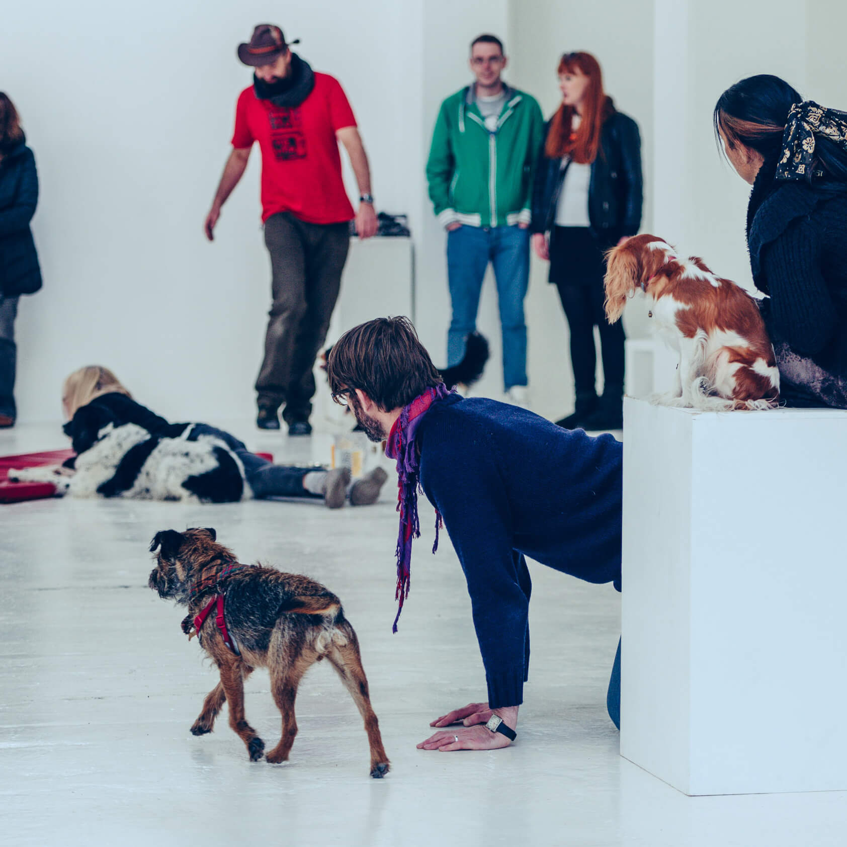 Angela Bartram's dogs and people