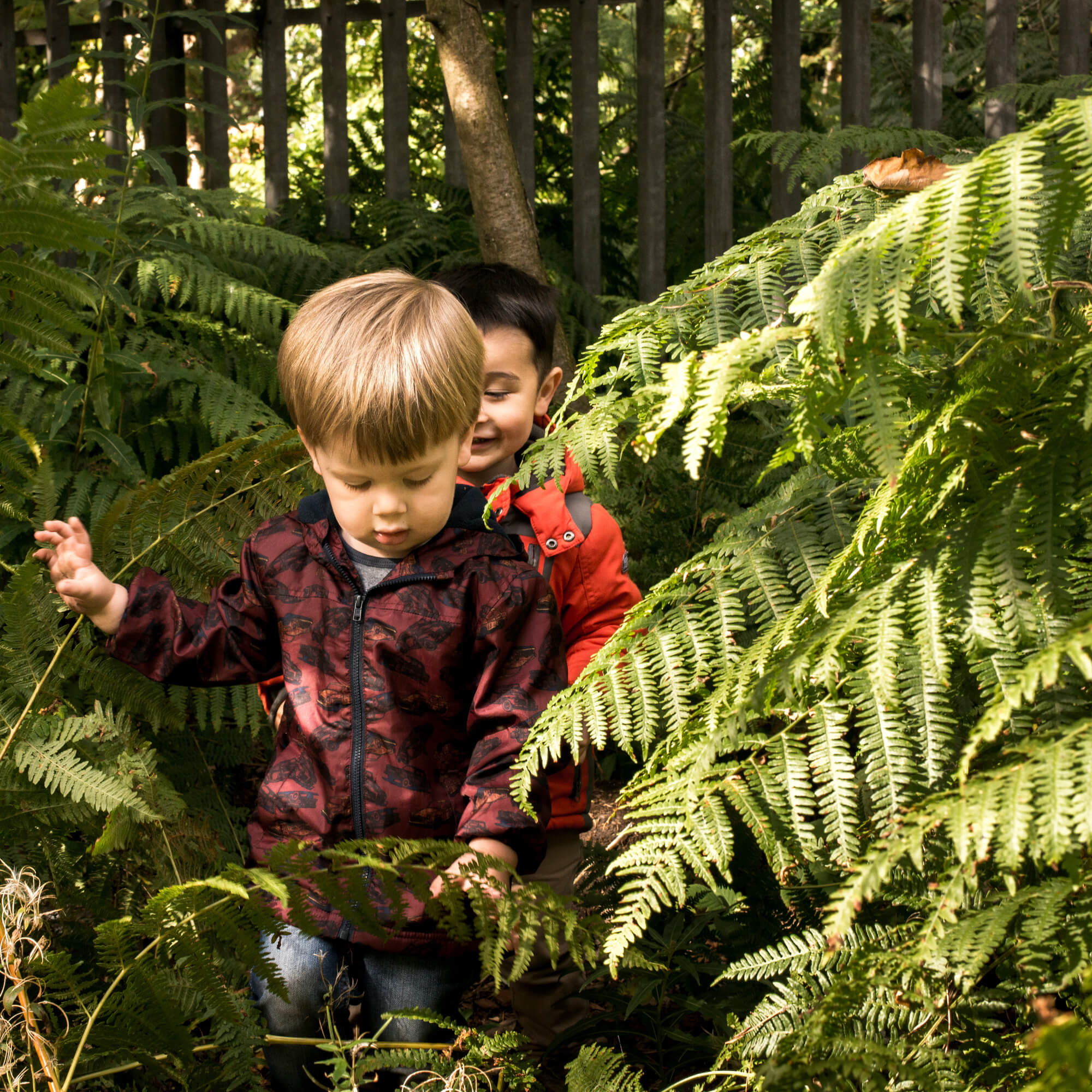 Children playing in a forest space