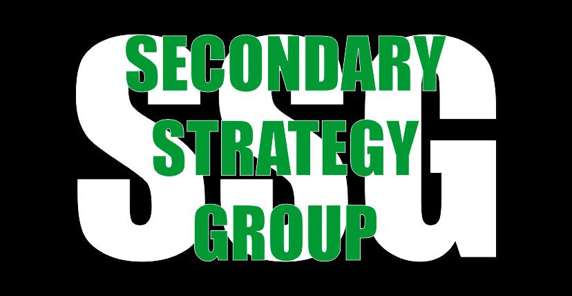 Secondary Strategy Group Logo