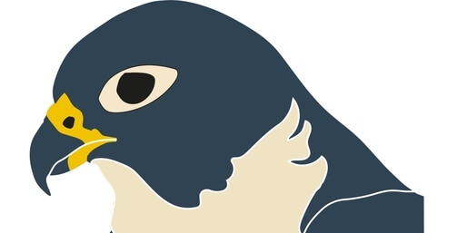 A penguin to illustrate the publisher