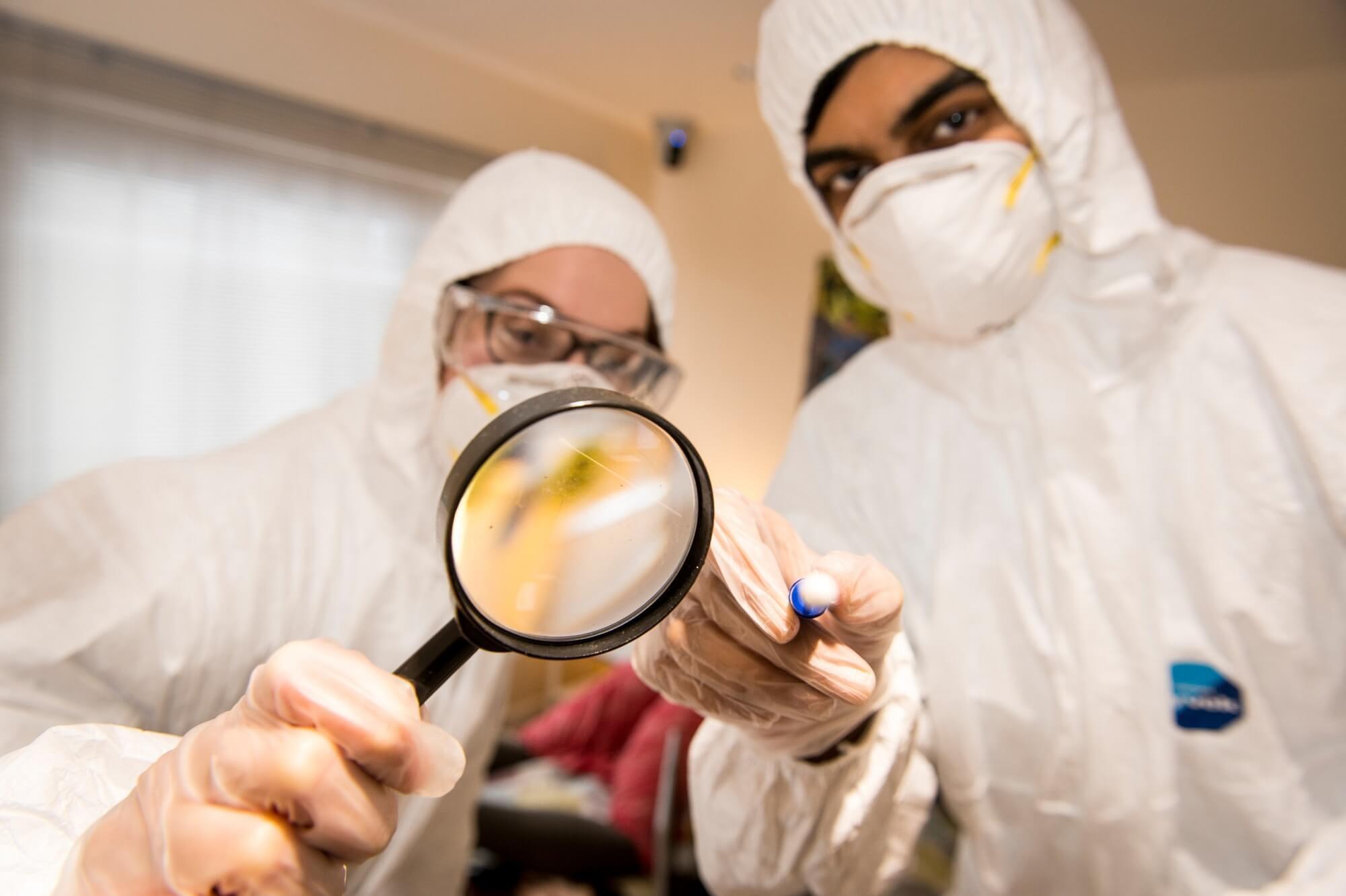 Foresnsics students examining a specimen