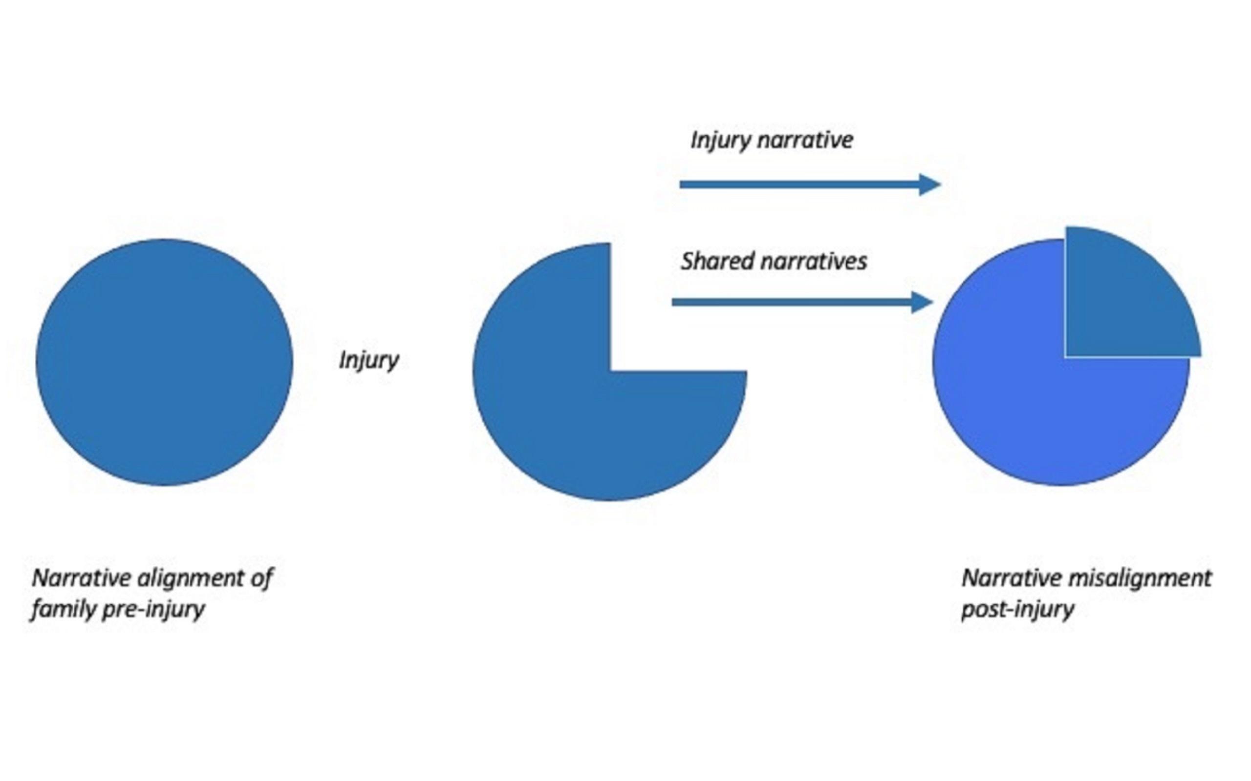 Diagram explain impact of brain injury on family relationship