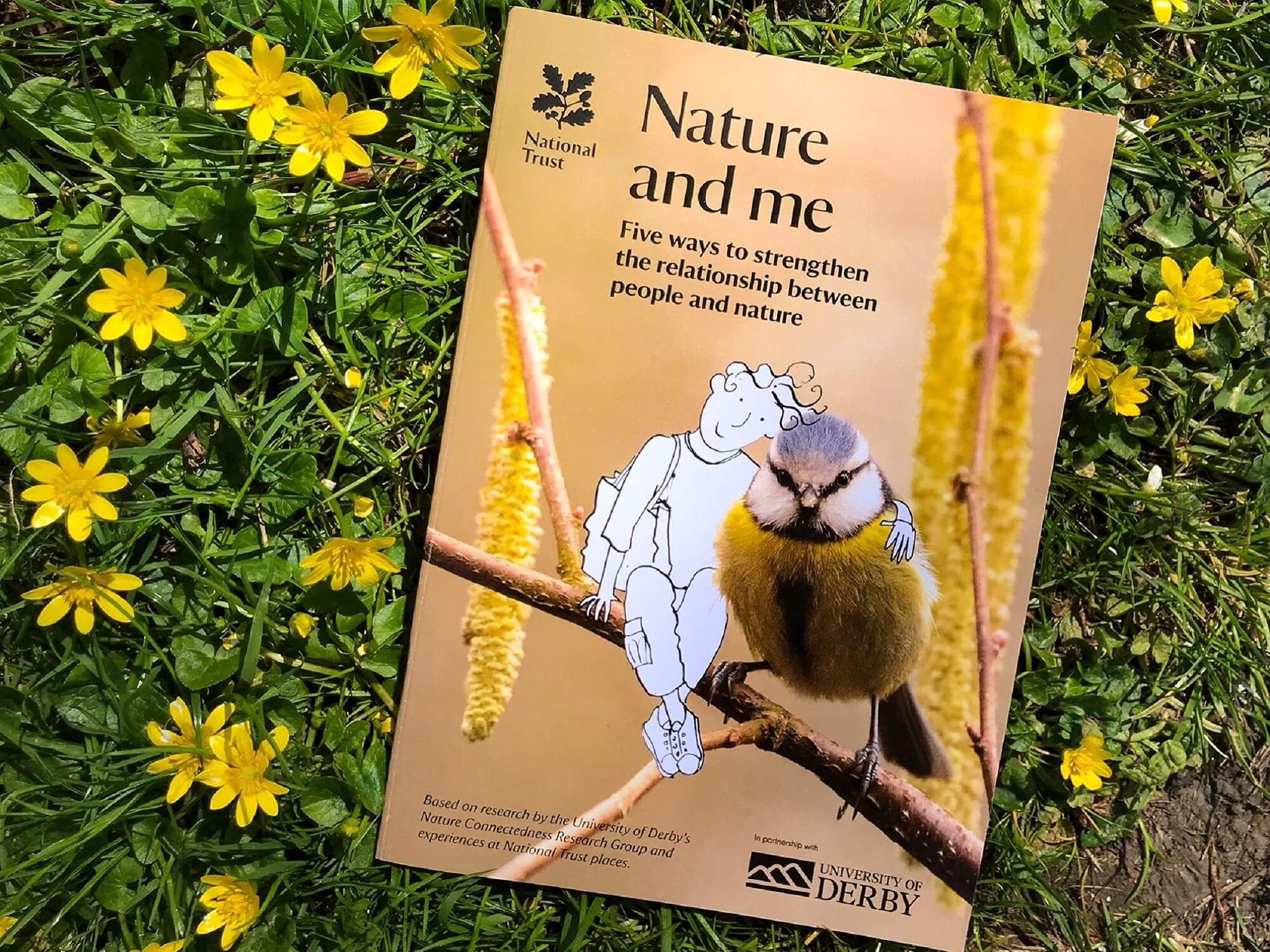 Booklet for Nature and Me programme pictured on a field of buttercups
