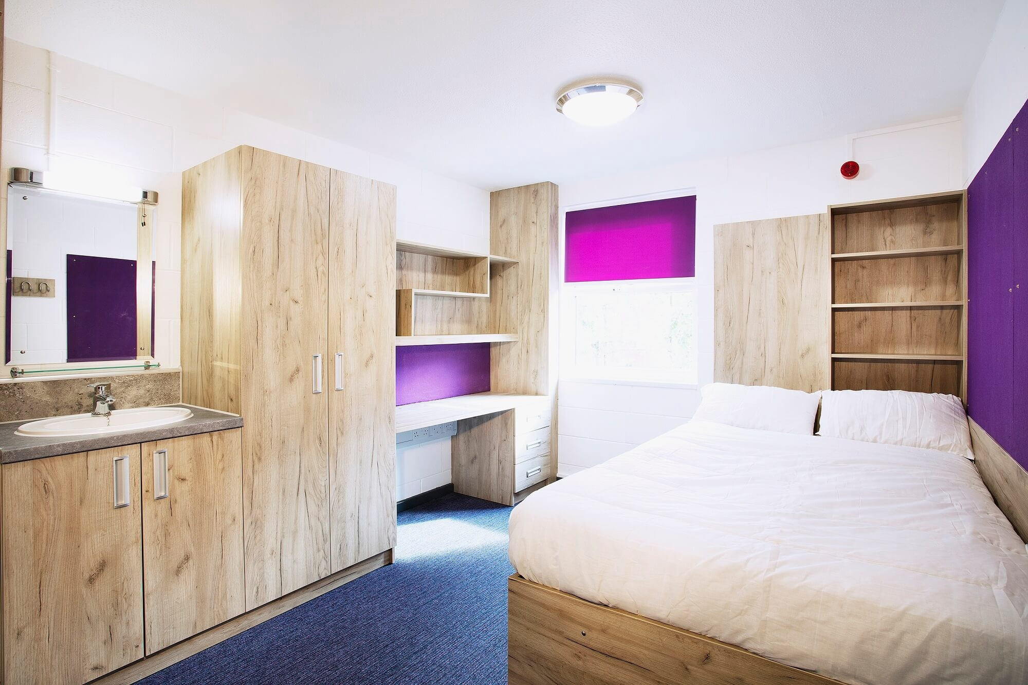 A student accommodation room