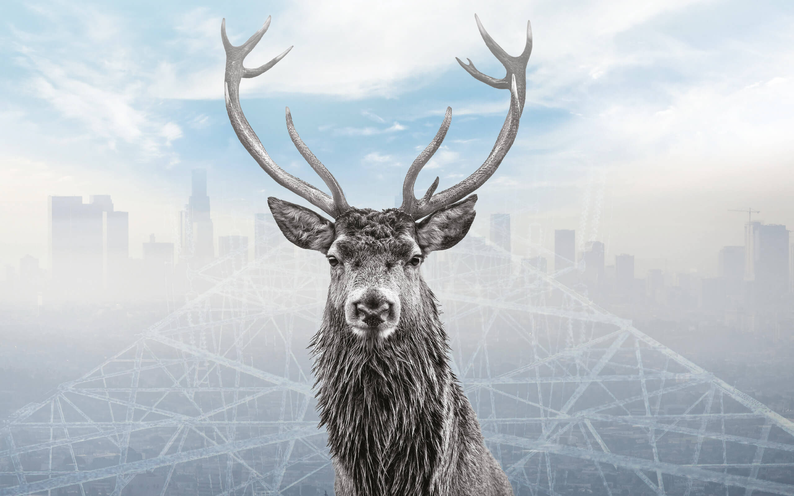 A reindeer with a foggy background and cityscape in the distance