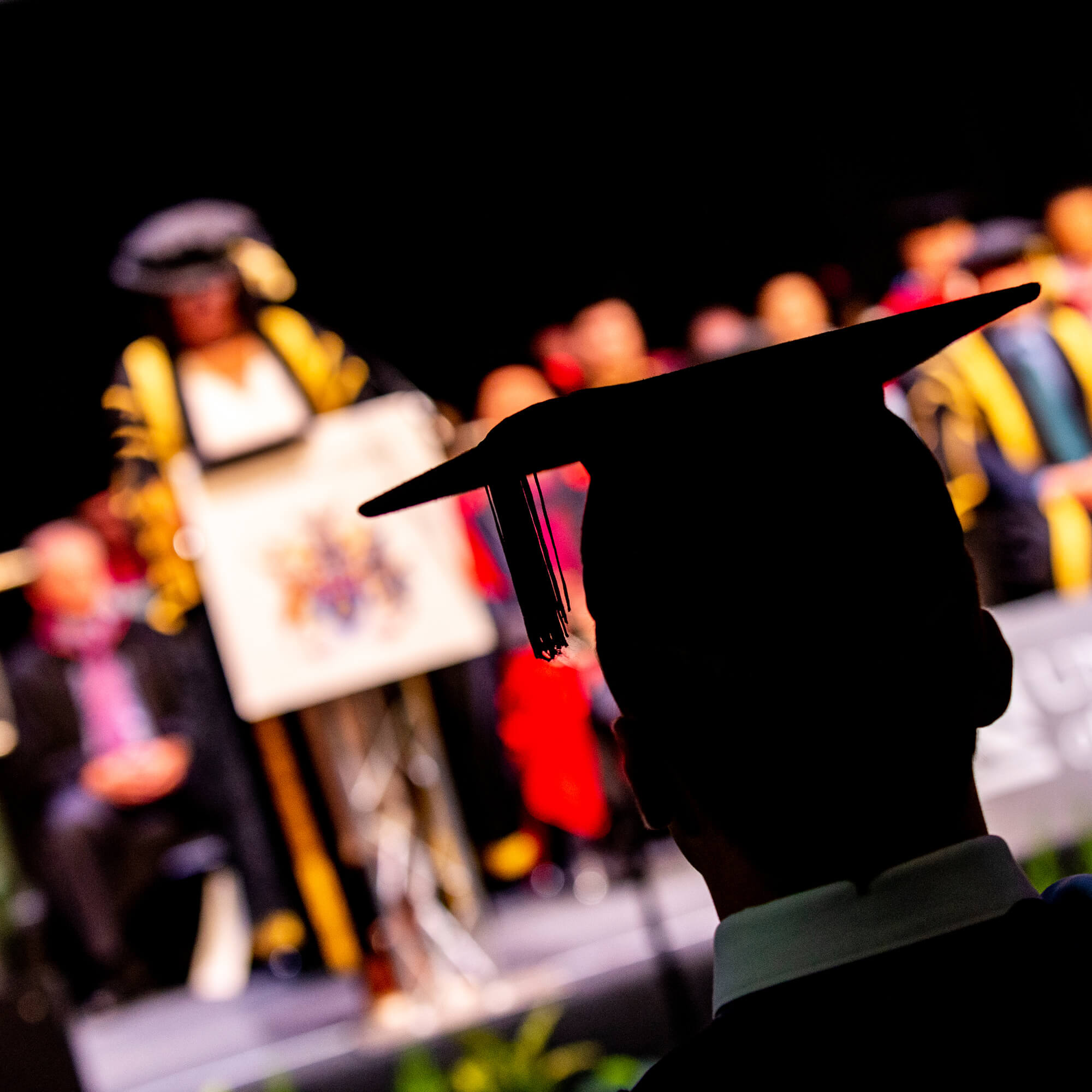 Silhouette of graduation cap