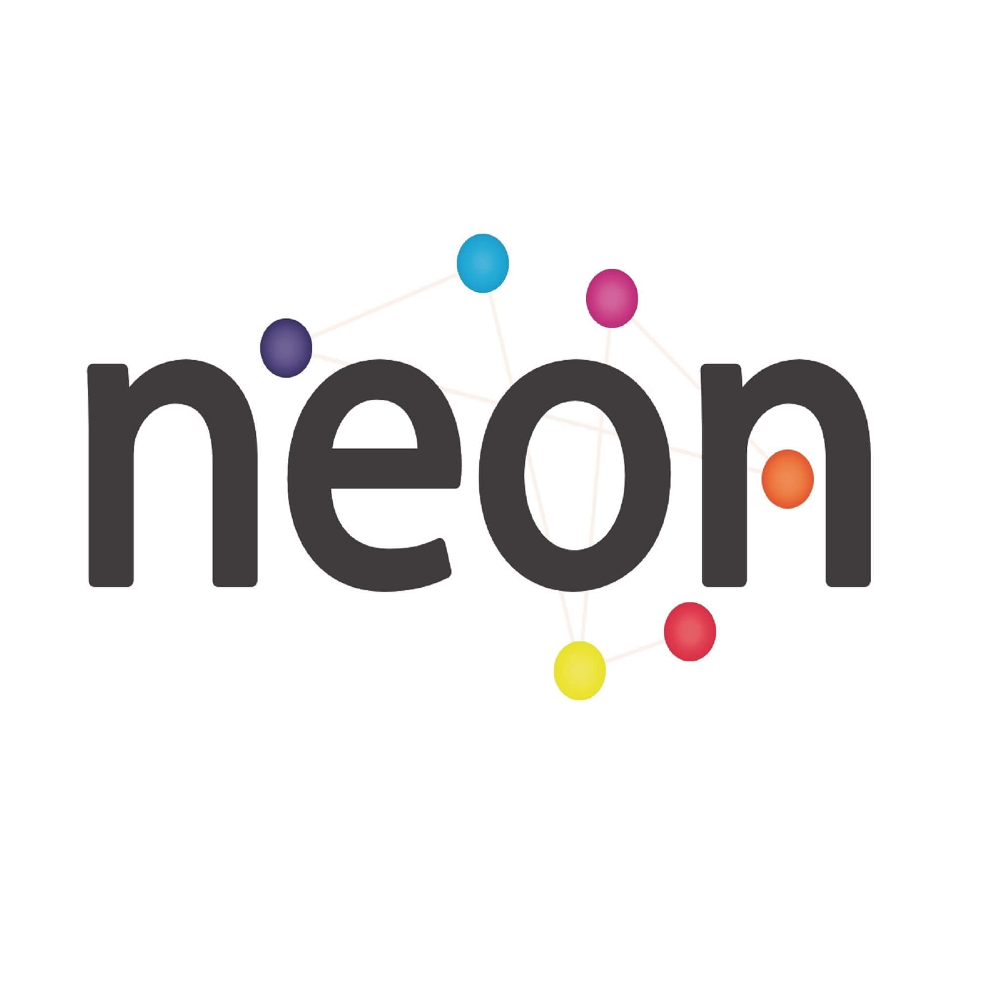 National Education Opportunities Network (NEON) logo