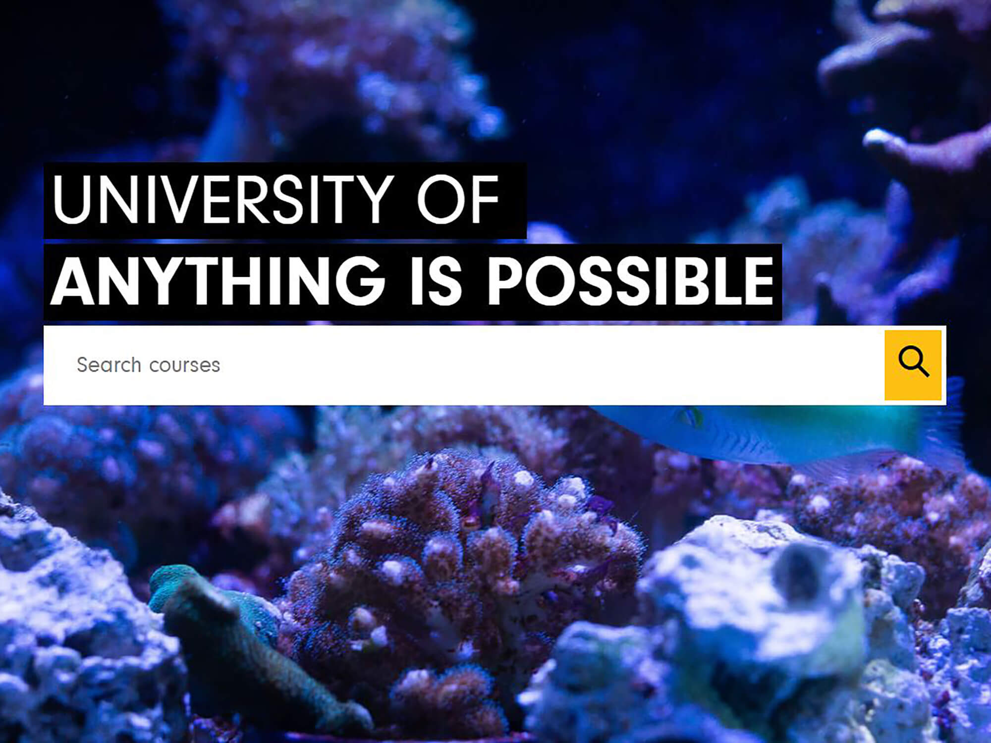 The University of Derby website home page