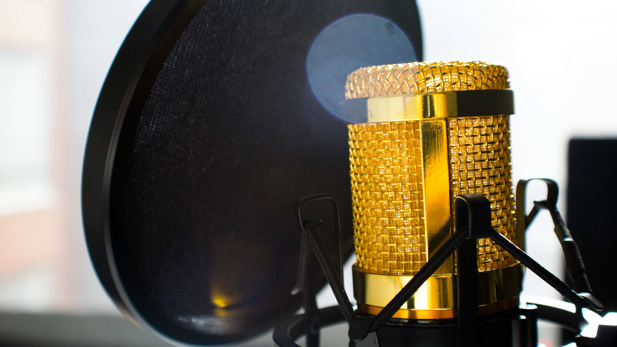 a microphone and a pop filter