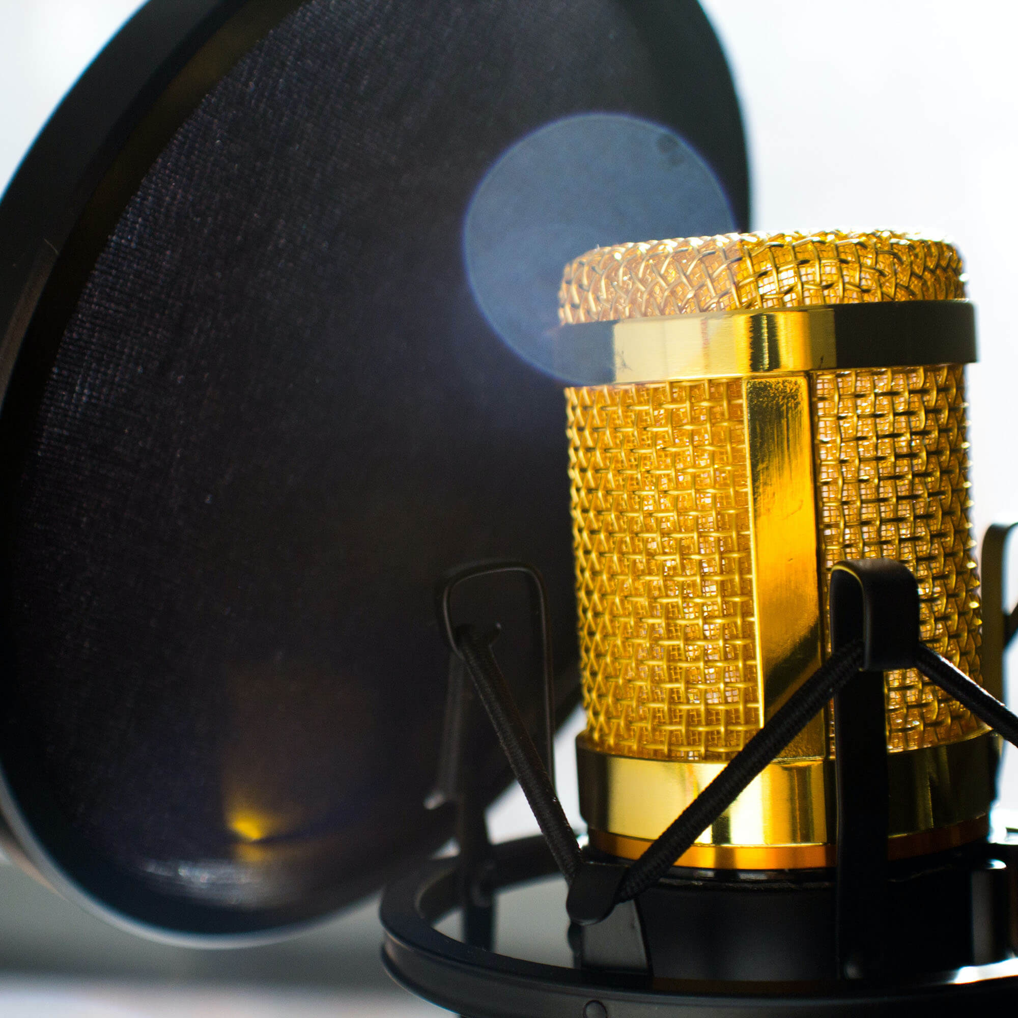 A microphone with a pop filter