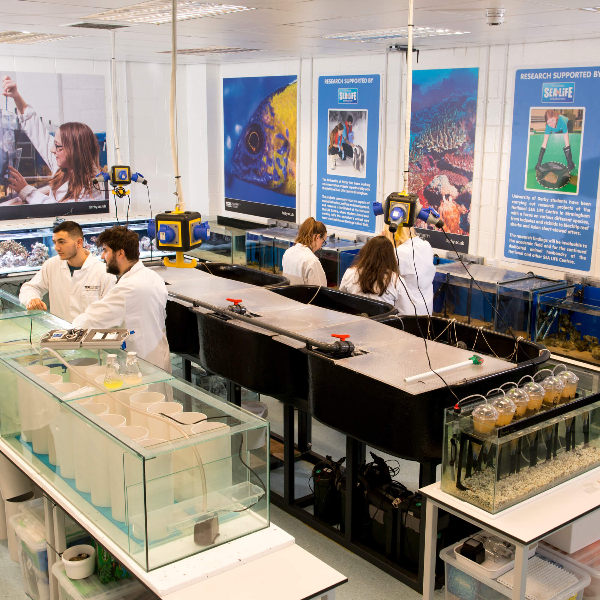 Students conducting research in the University of Derby's Aquatic Research Facility