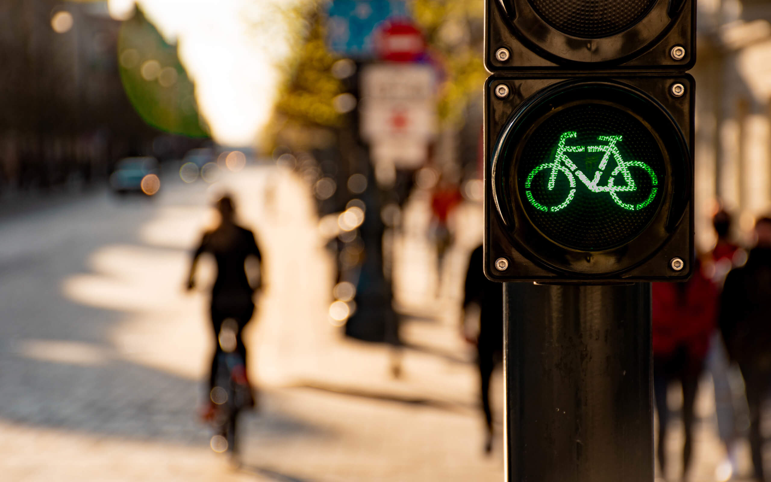 Traffic light showing a green bicycle lit up