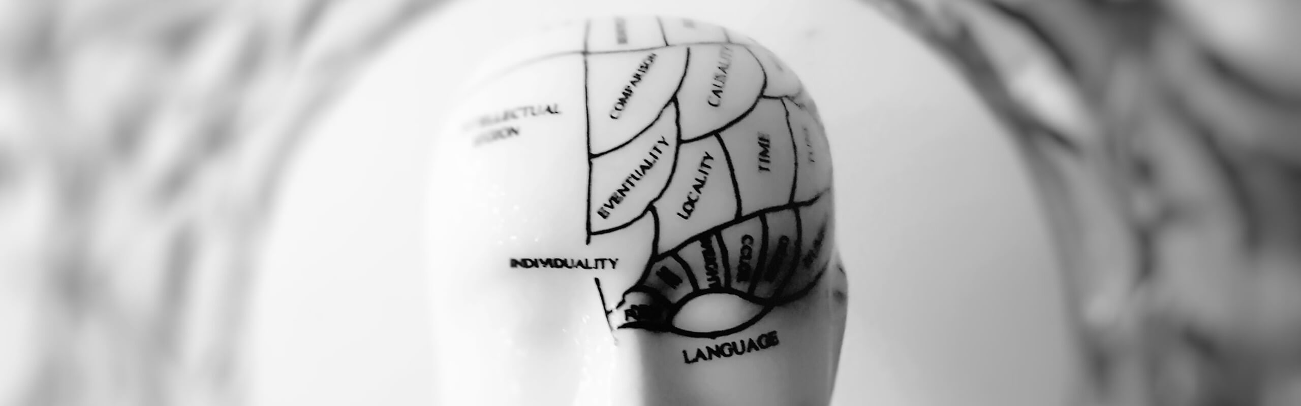 an old-fashioned pottery head showing areas of the brain