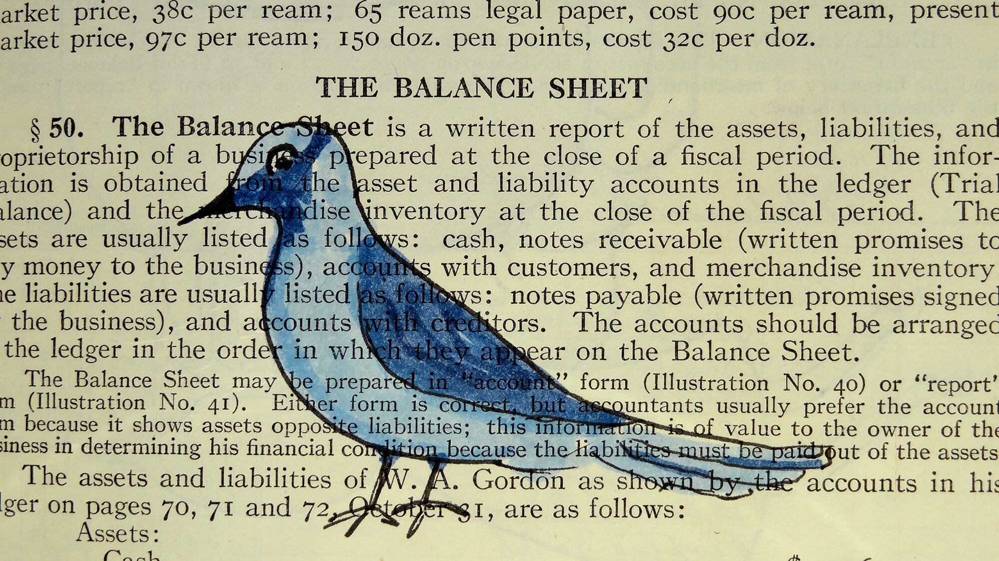 Drawing of a bird on a newspaper page