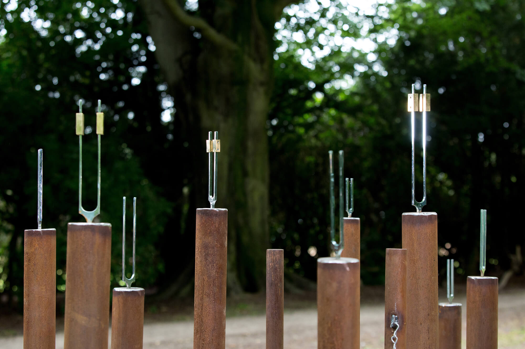 tuning forks of different sizes standing on poles