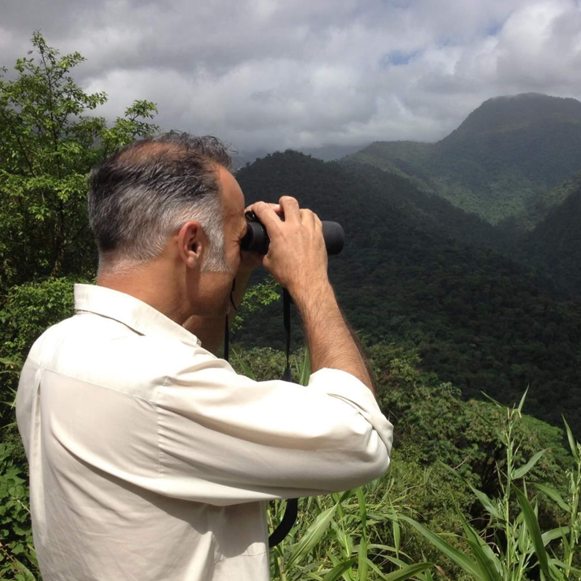 Male academic looking over the rainforest in Costa Rica