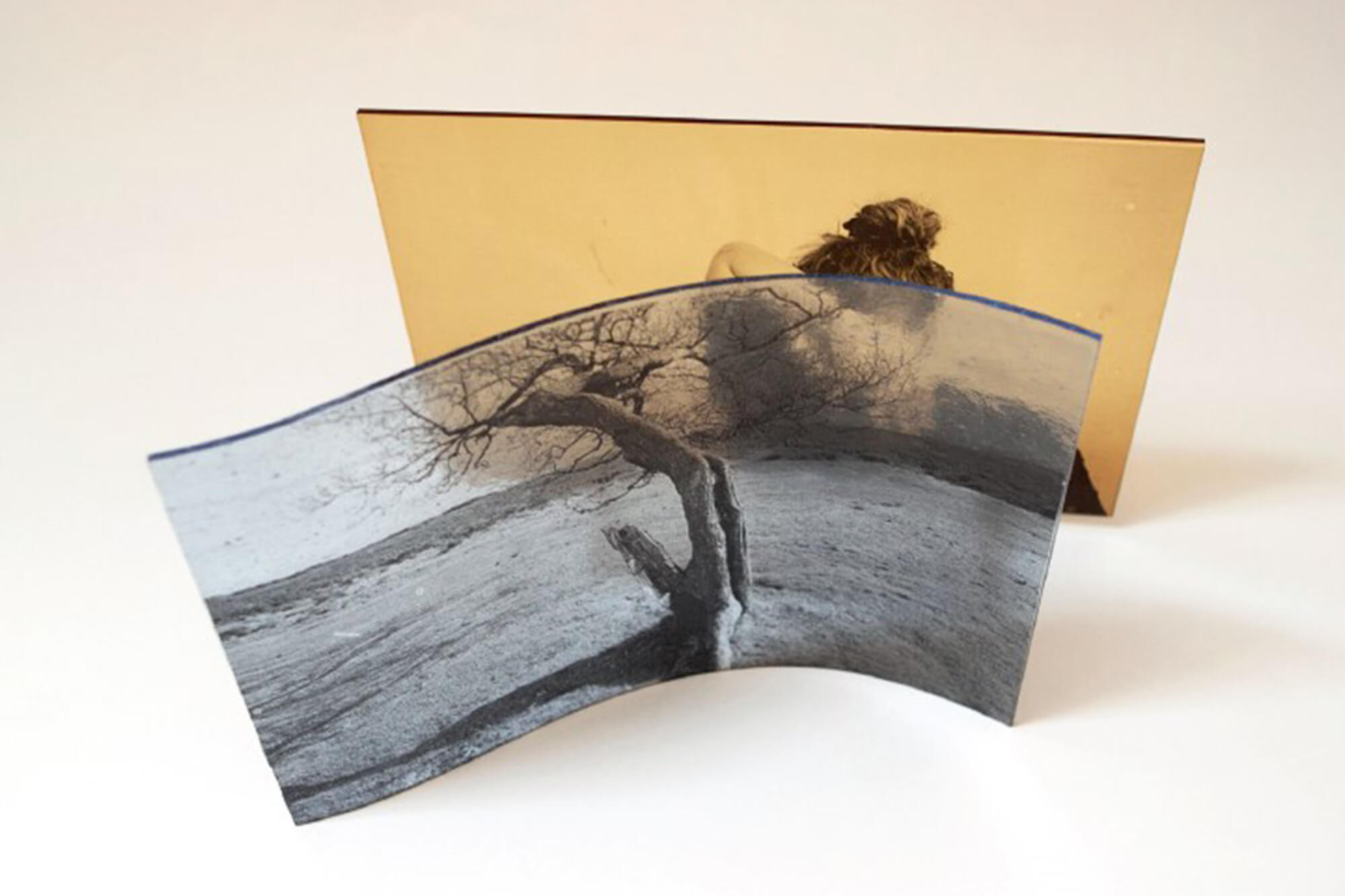 A negative photo of a tree in a field on curved glass stands in front of a sepia image of a woman leaning forward