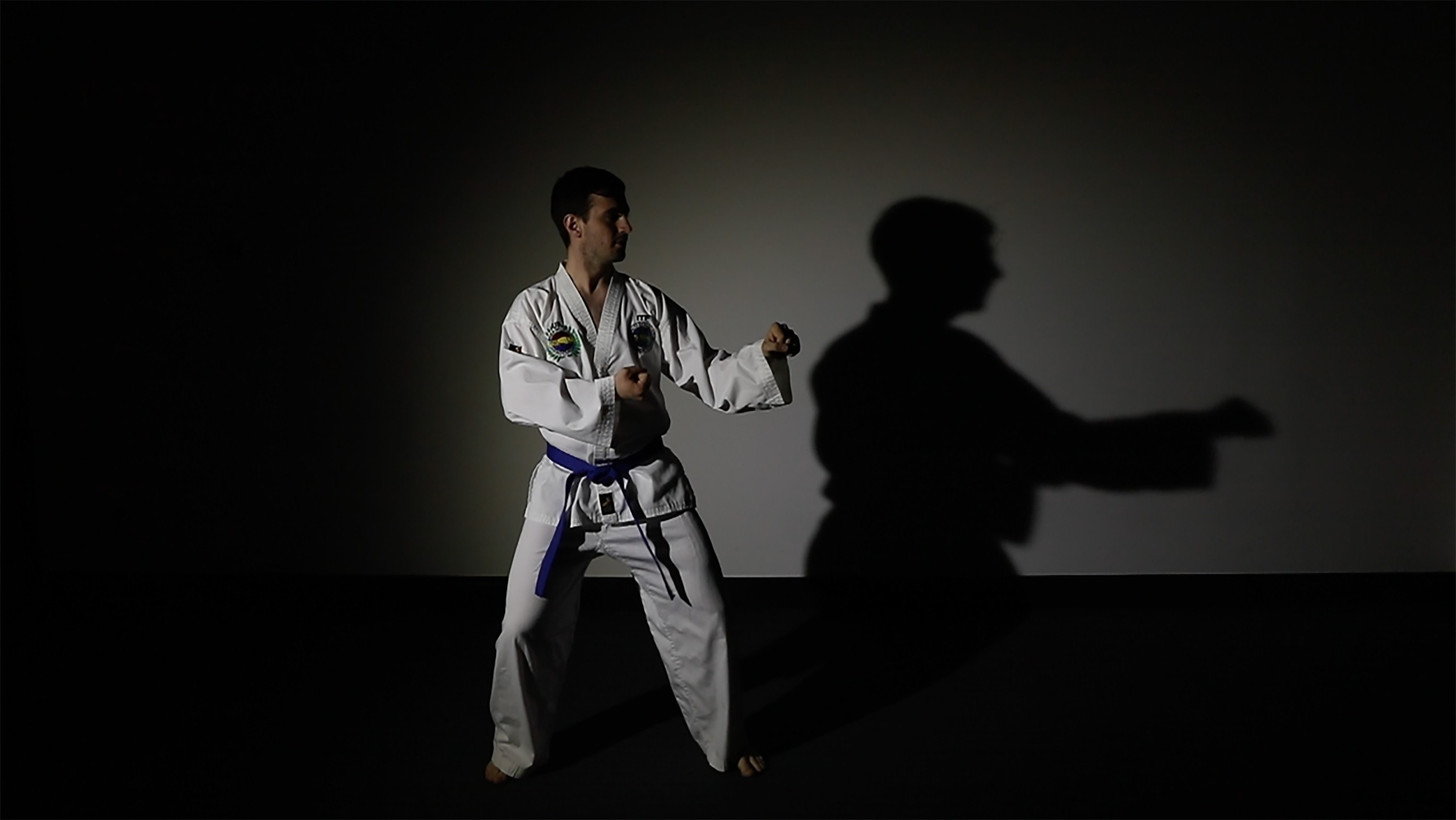Martial arts motion of a man in a standing position
