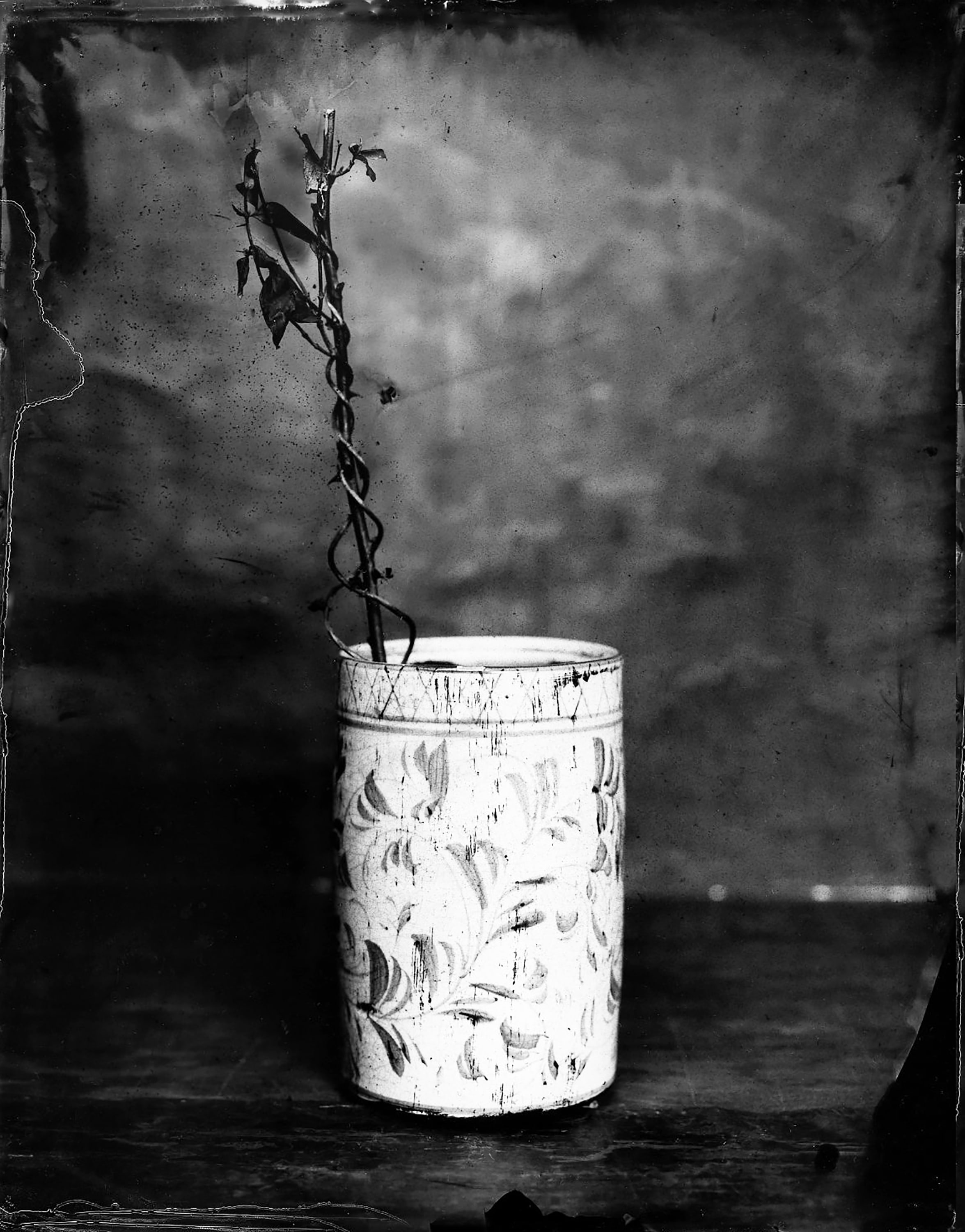 Black and white photo of a wilting flower in a tin
