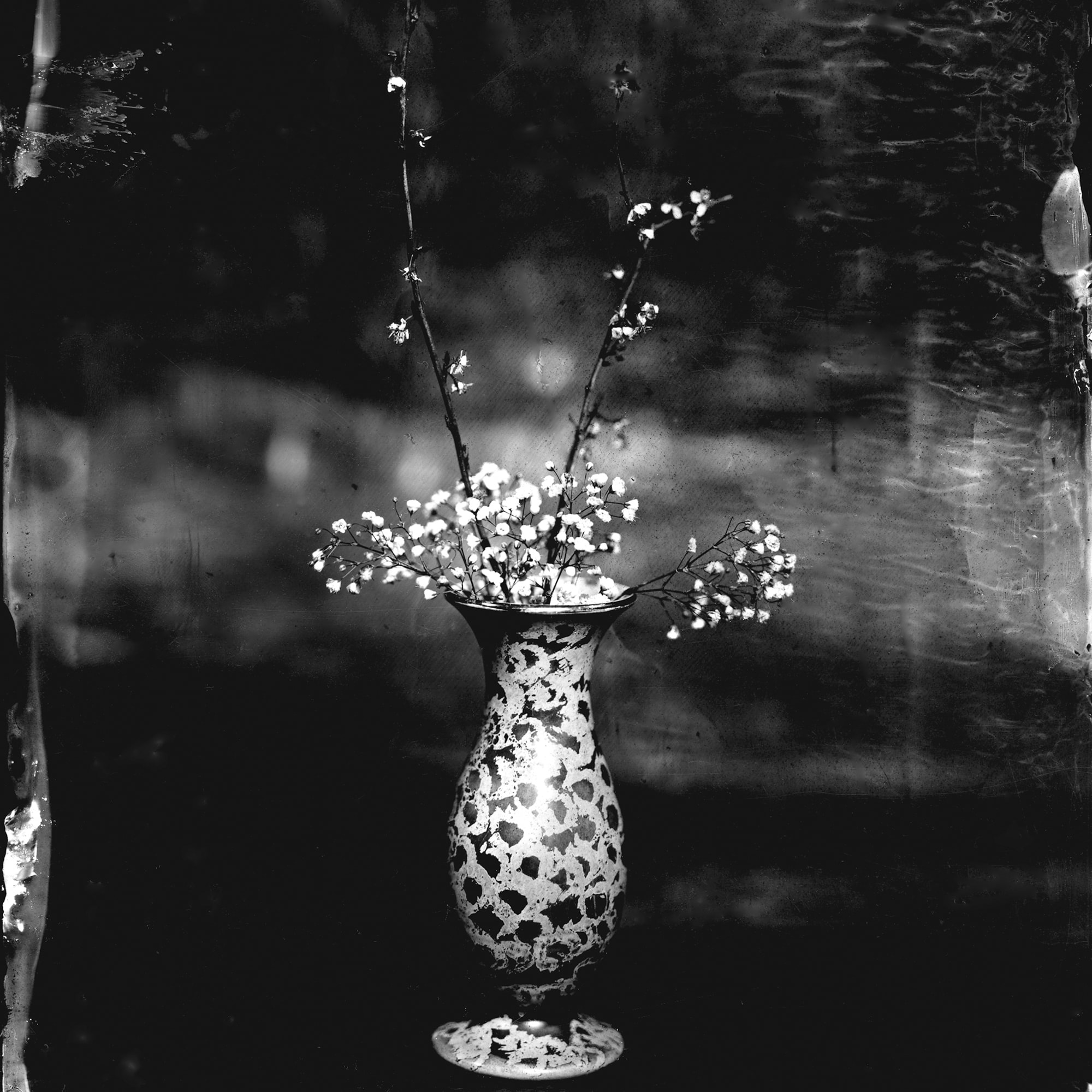 Black and white image of flowers in a patterned vase