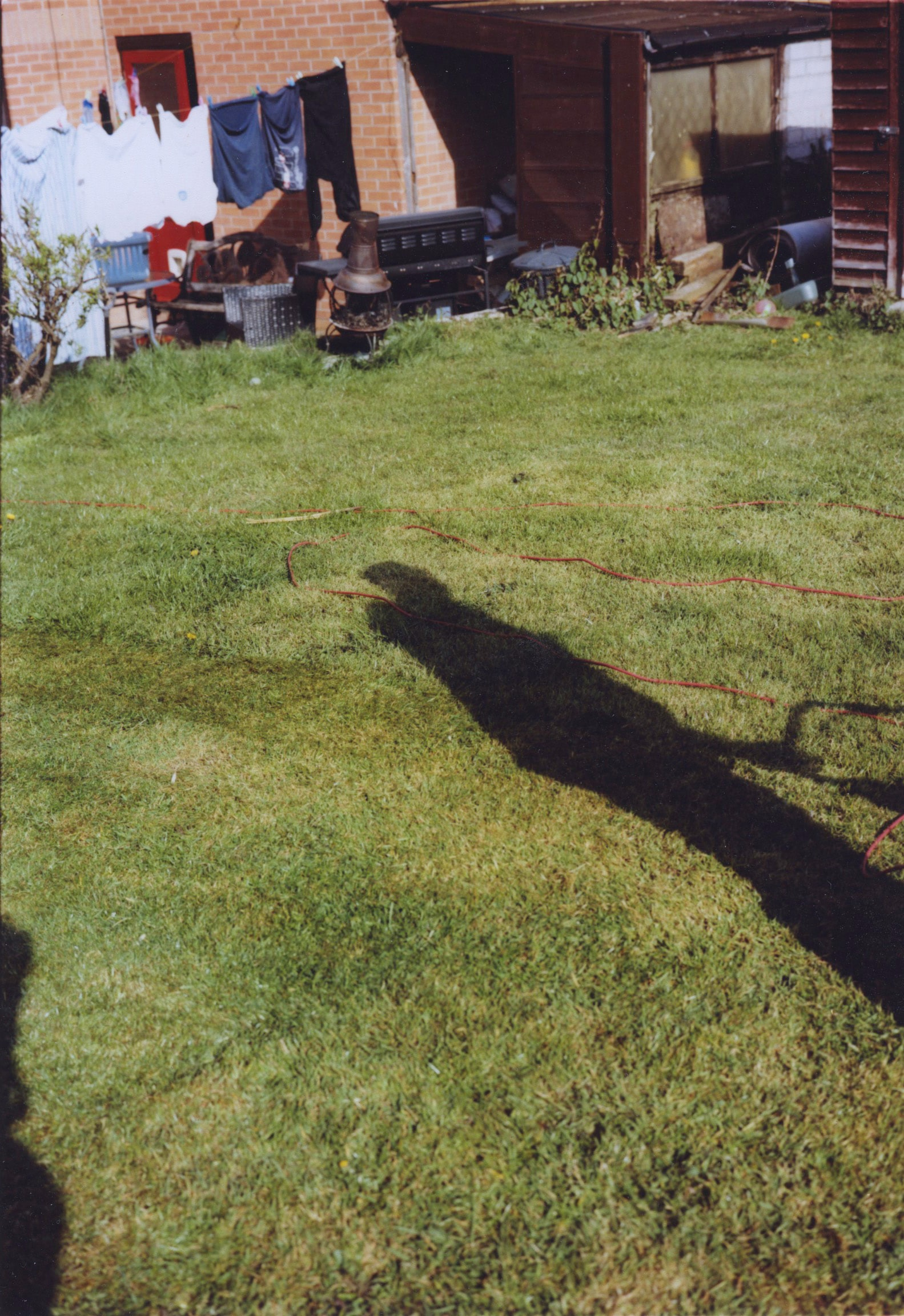 Photo of a garden with the shadow of a man mowing the lawn