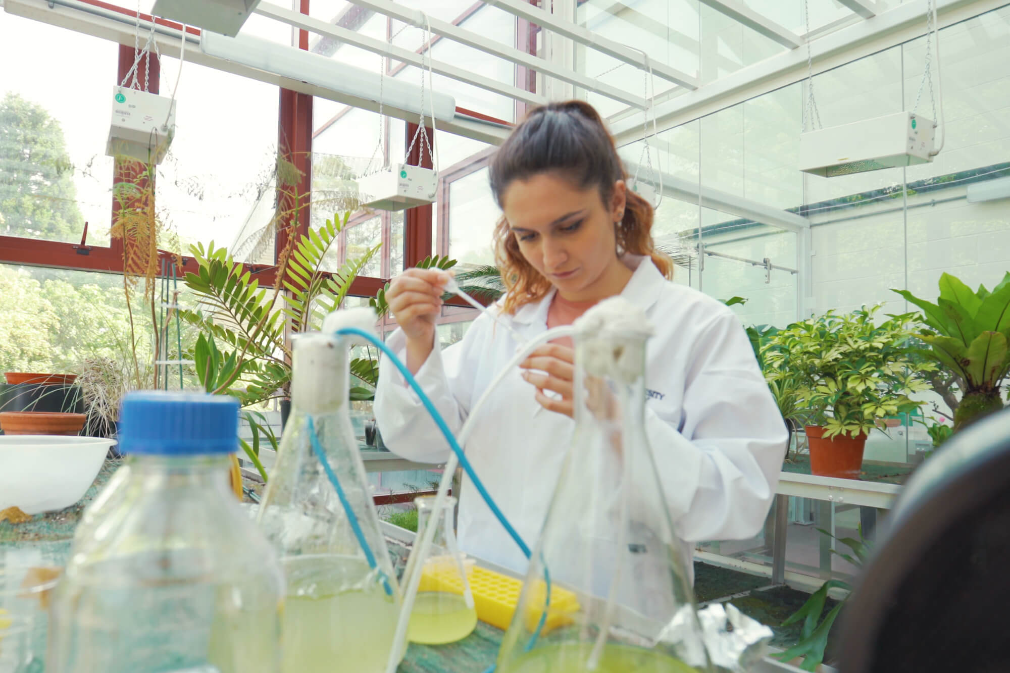 A University of Derby Student in a greenhouse research facility.