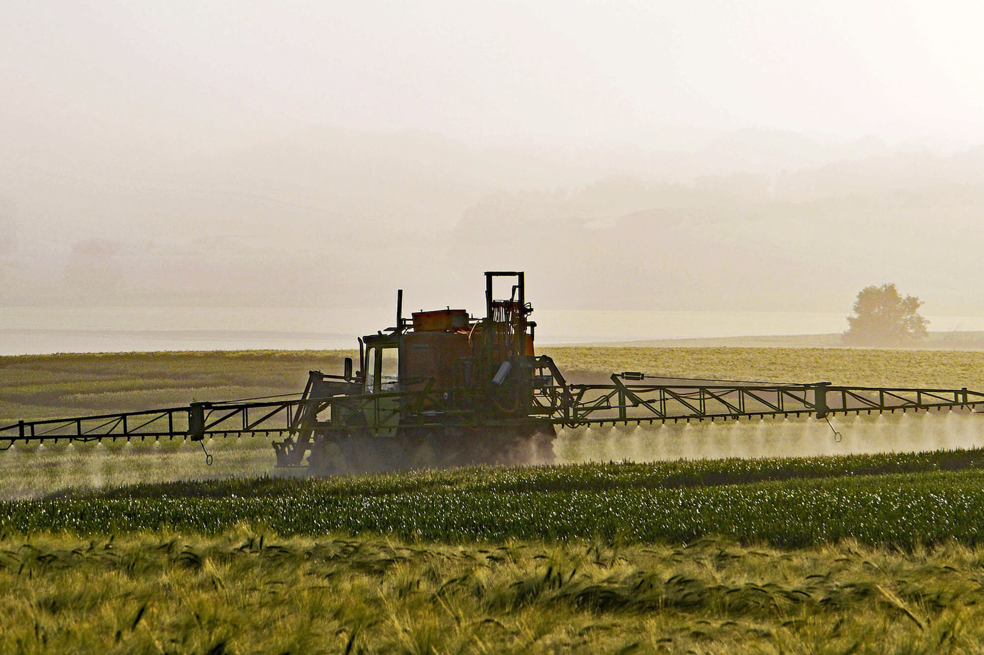 Farmer in tractor spraying pesticides on crops