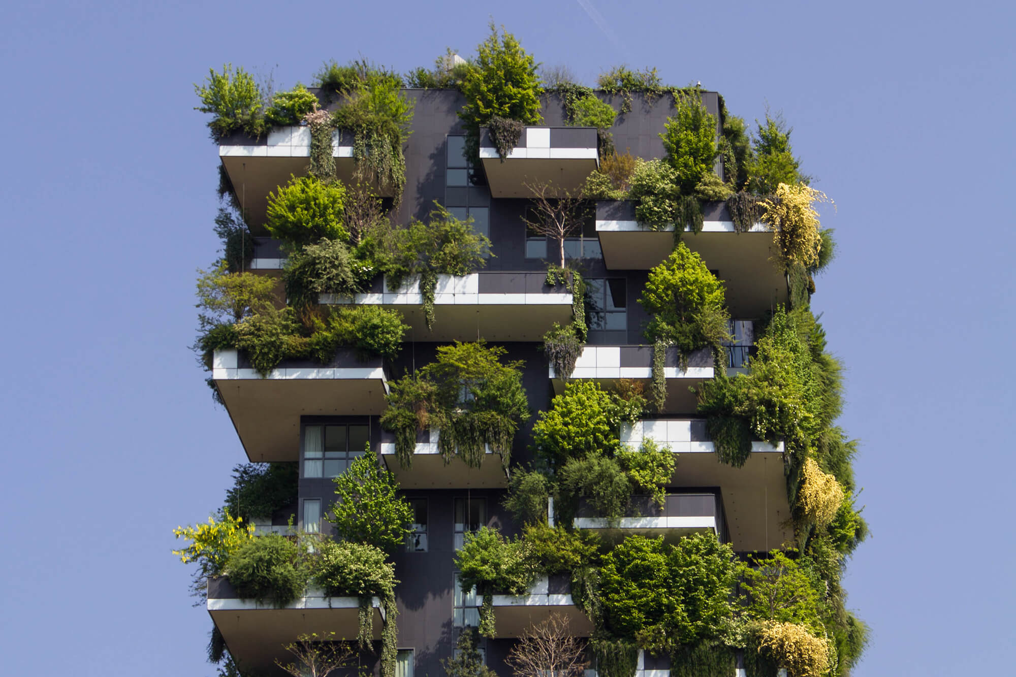 A high rise building with lots of plants growing on the outside.
