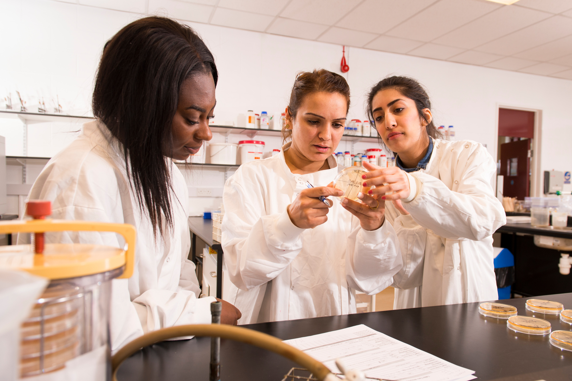 A group of three female students looking into a petridish in a lab
