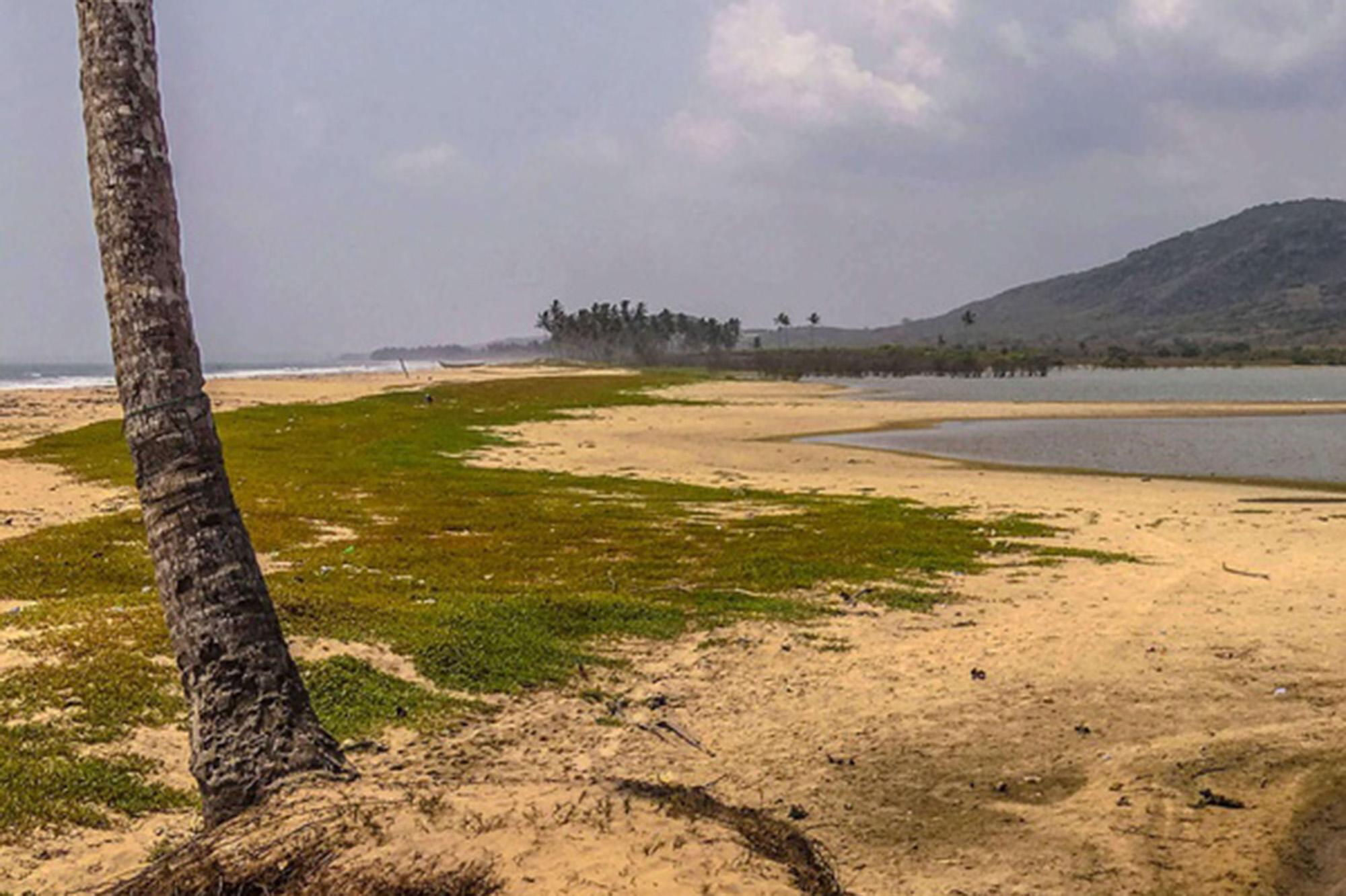 coastal scenery in Ghana
