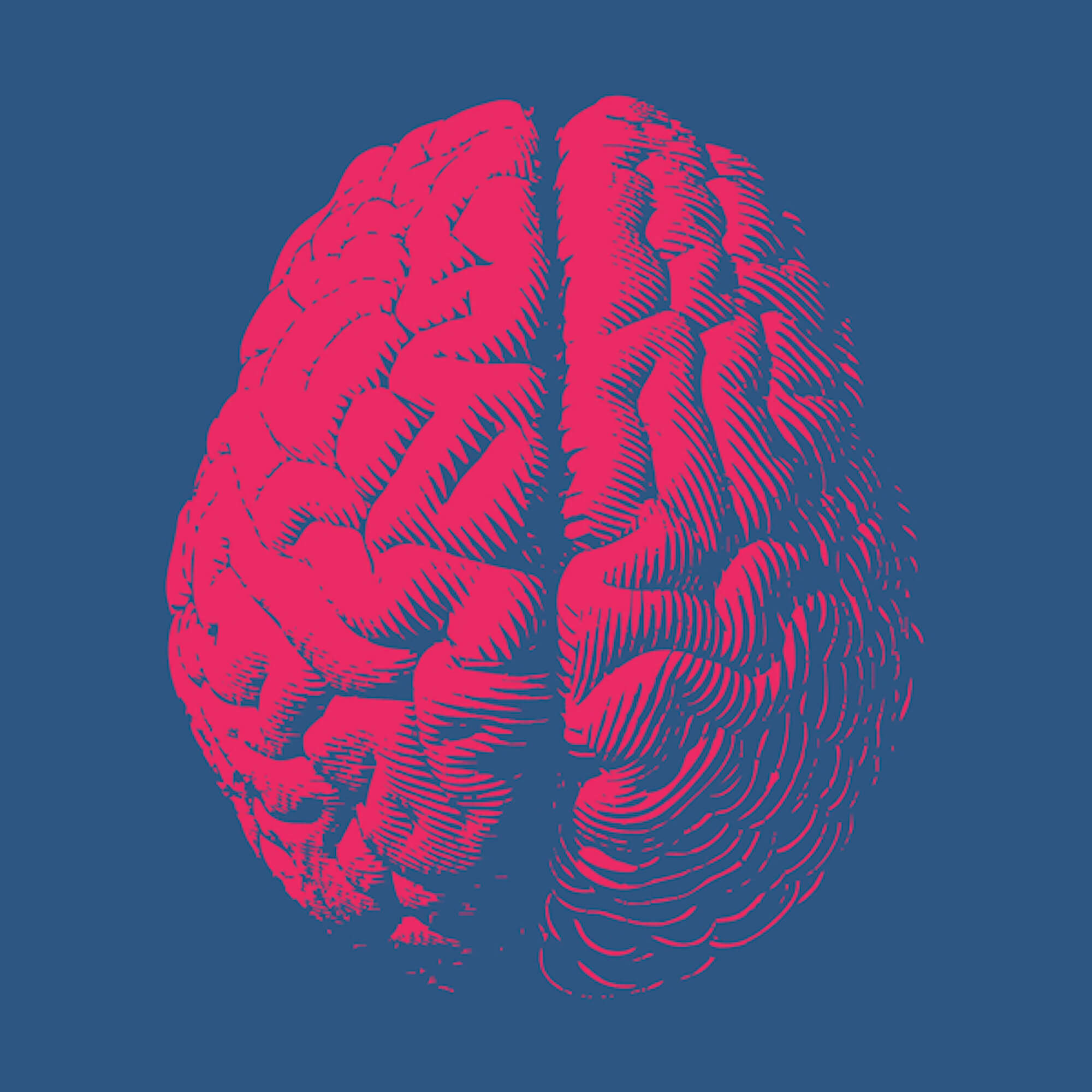Image of a red brain on a blue background