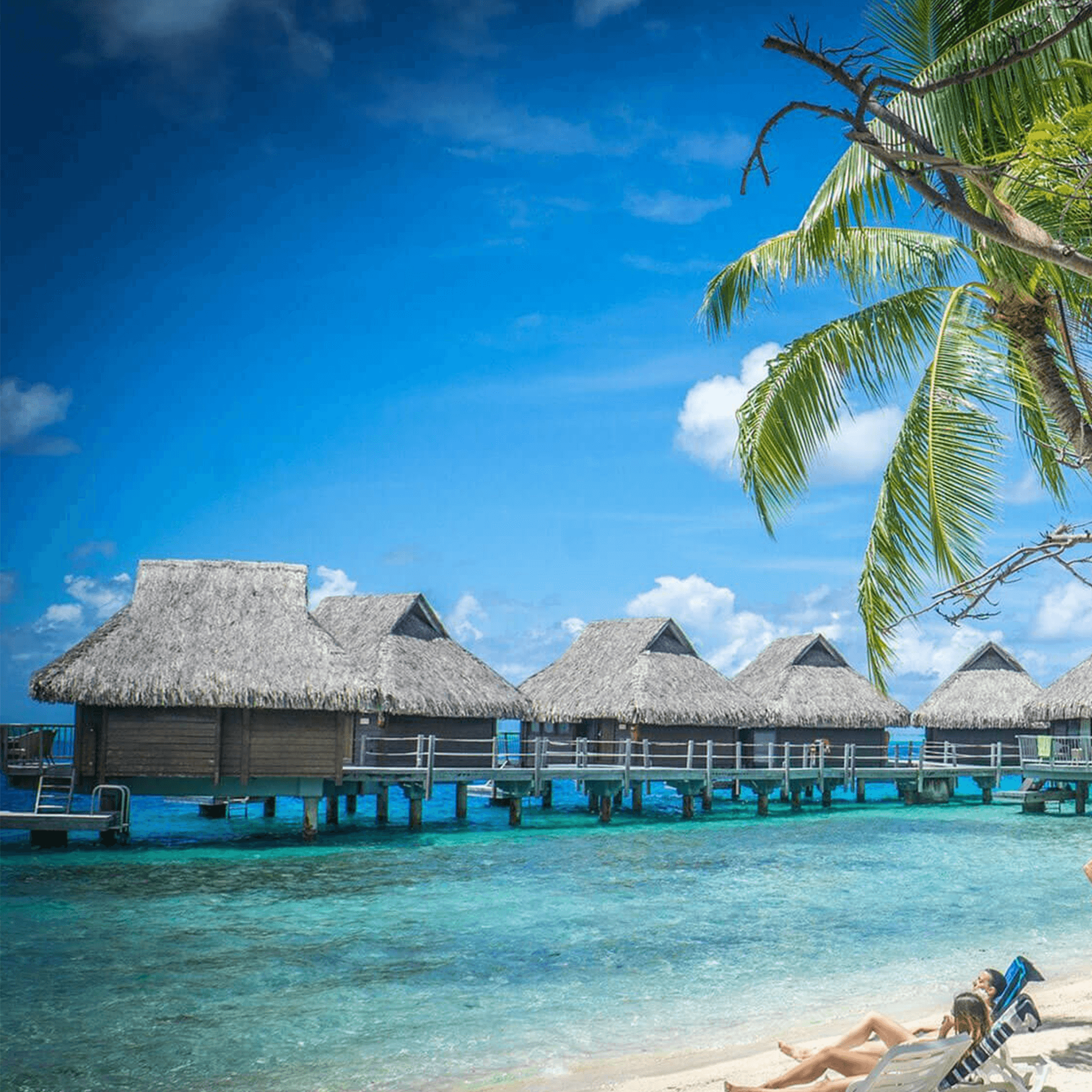 Sunny beach with huts in the ocean