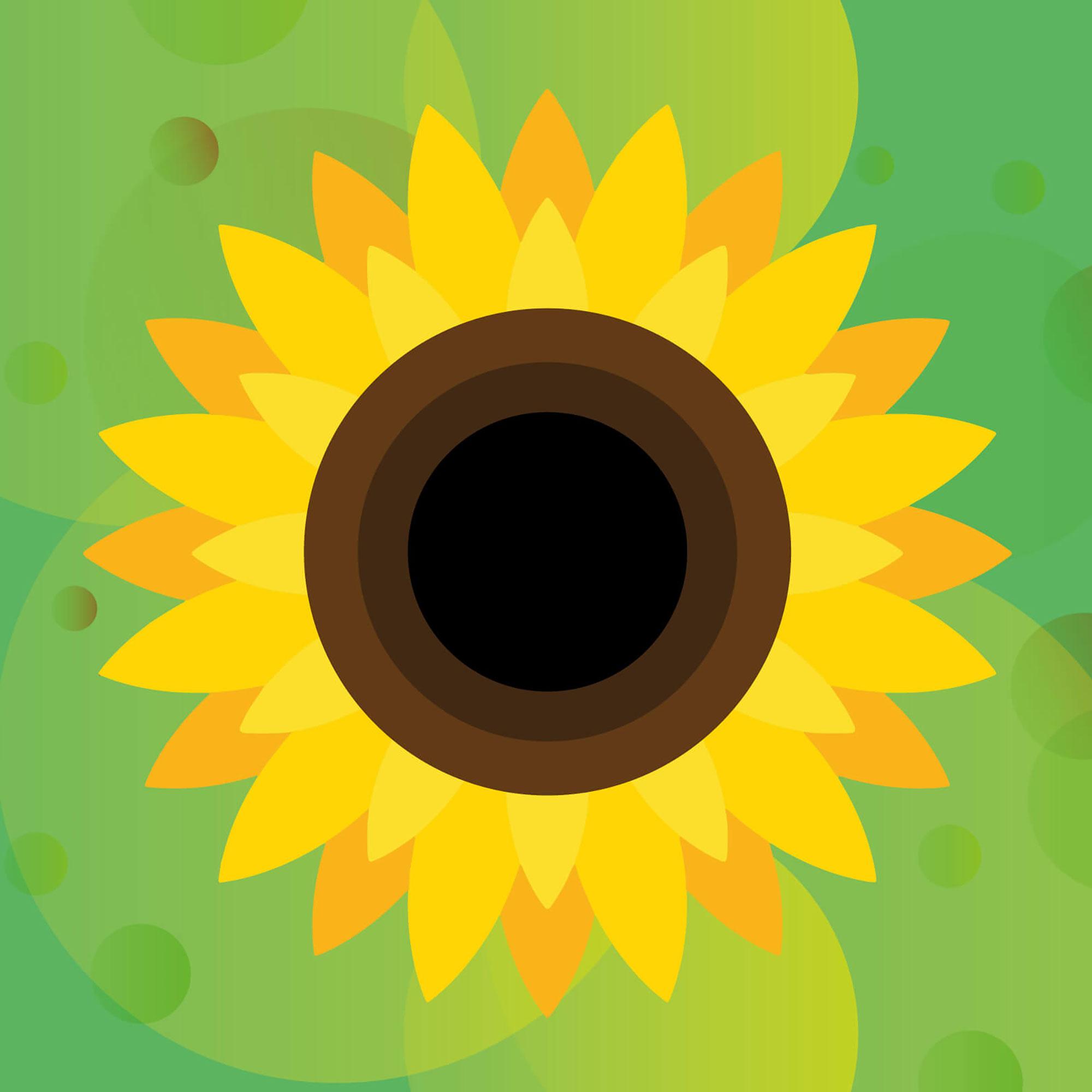 Yellow sunflower representing hidden disabilities