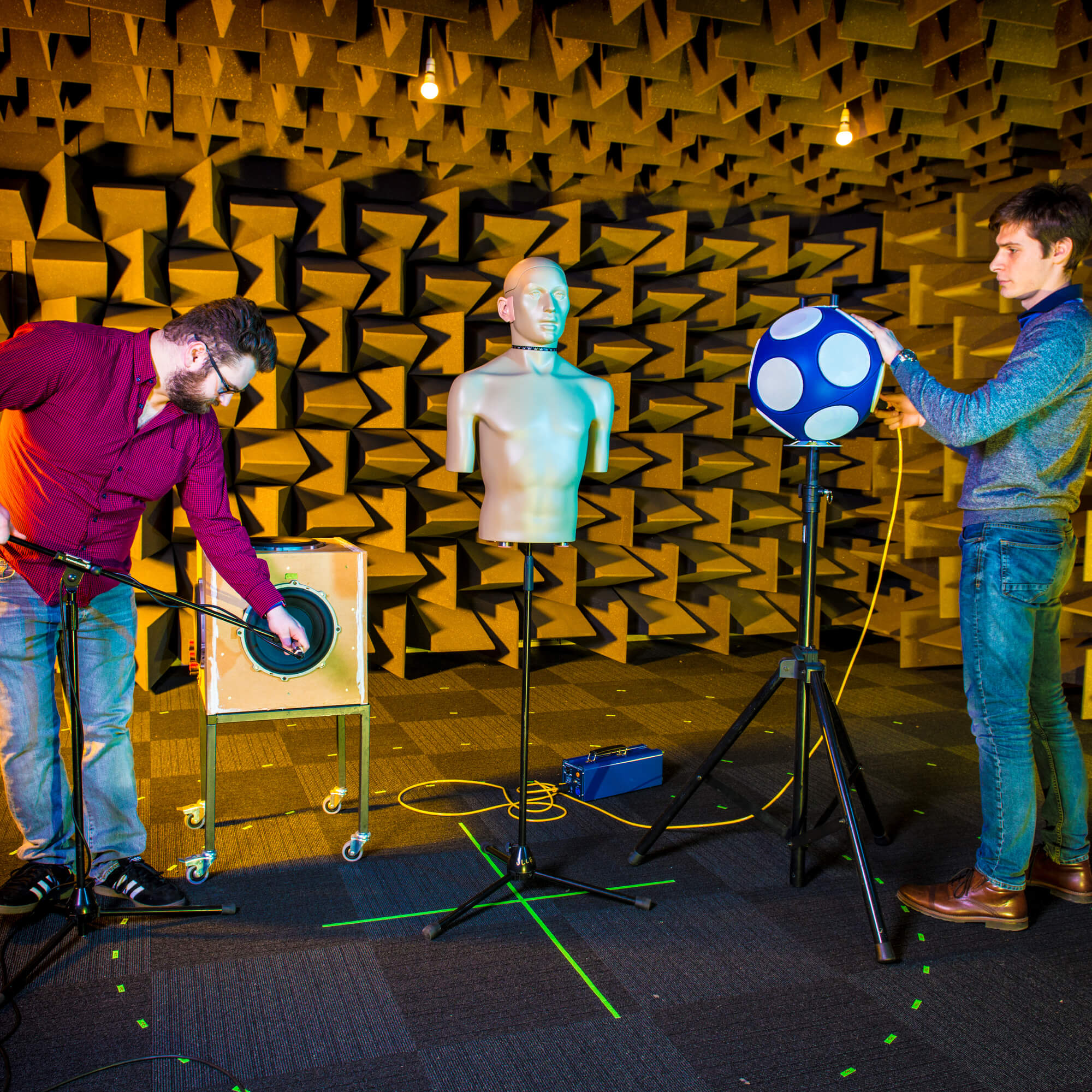 Academics working in the hemi anechoic chamber