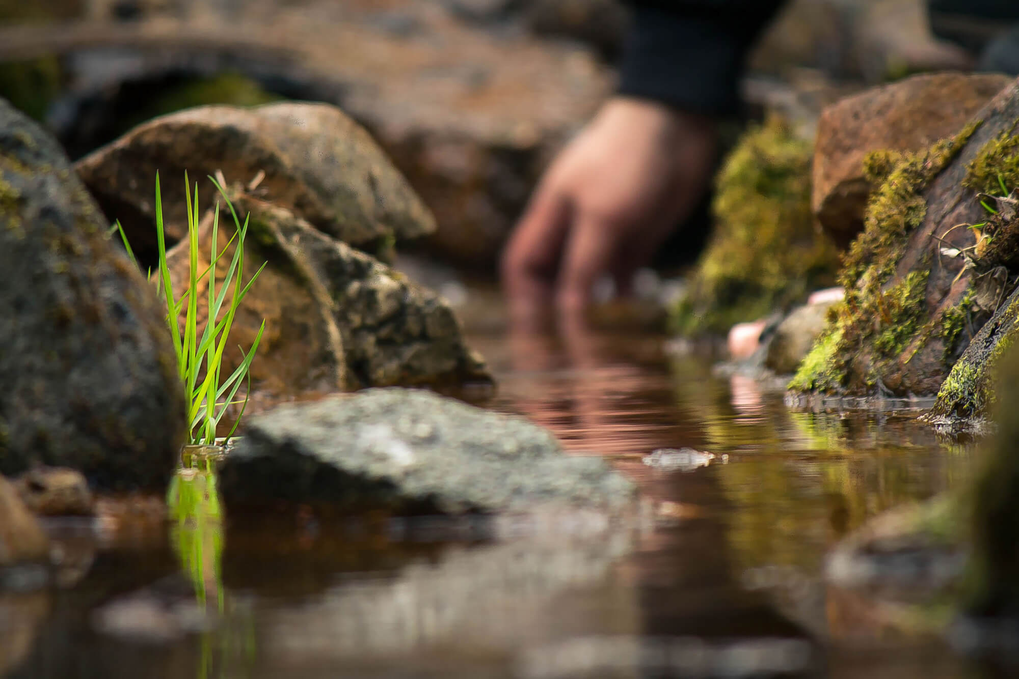 A person dipping their hand into a stream