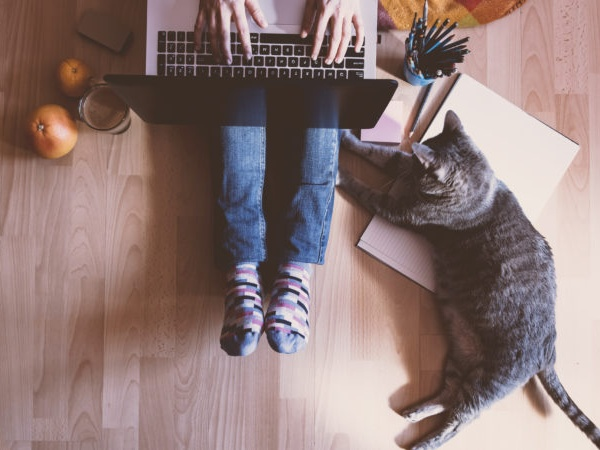 A student sitting on the floor with a laptop on her lap and a grey cat laying next to her