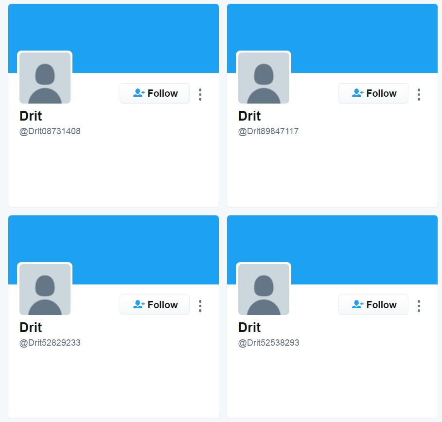 Examples of fake Twitter accounts