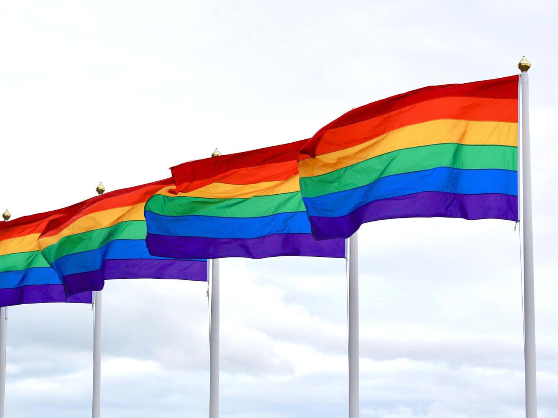 LGBT+pride flags