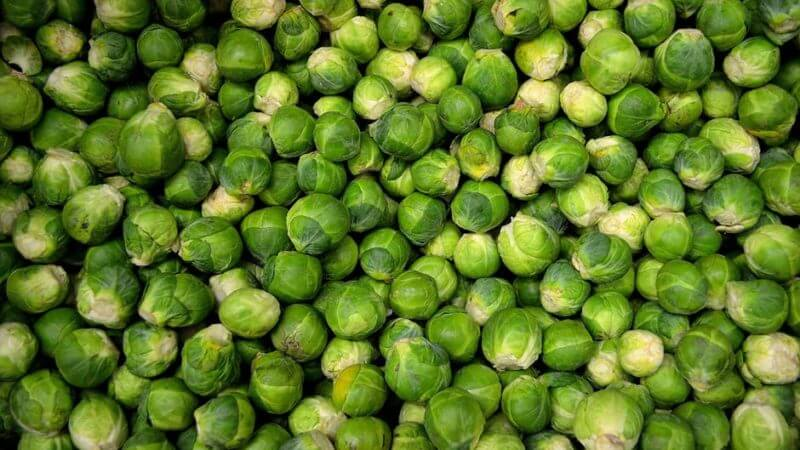 A pile of Brussels sprouts