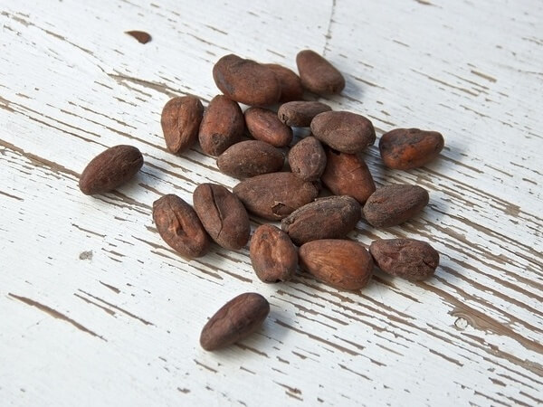 Cocoa beans on table