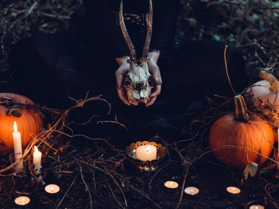 A halloween picture with candles and pumpkins