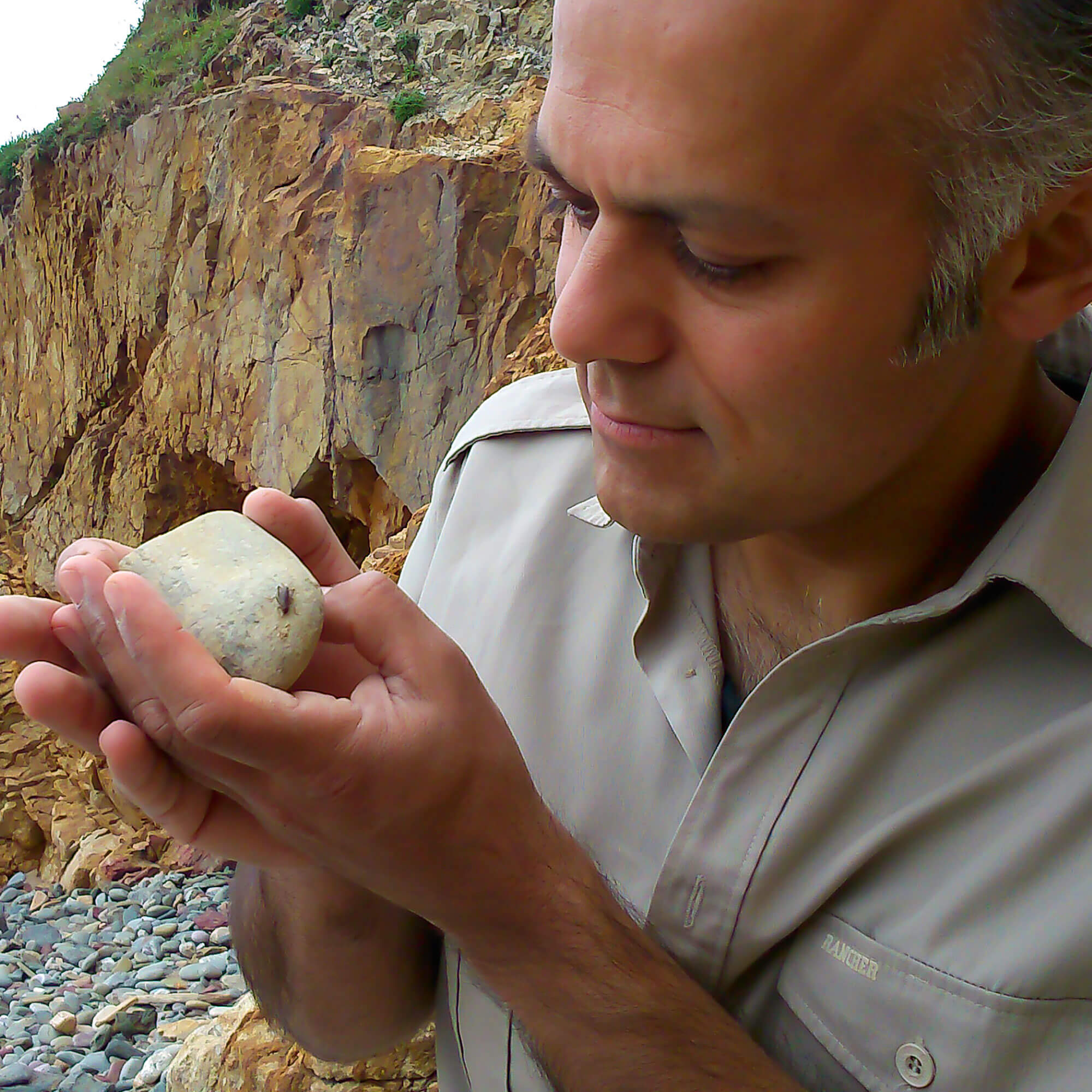 Karim Vahed observing a scaly cricket on a stone he's holding