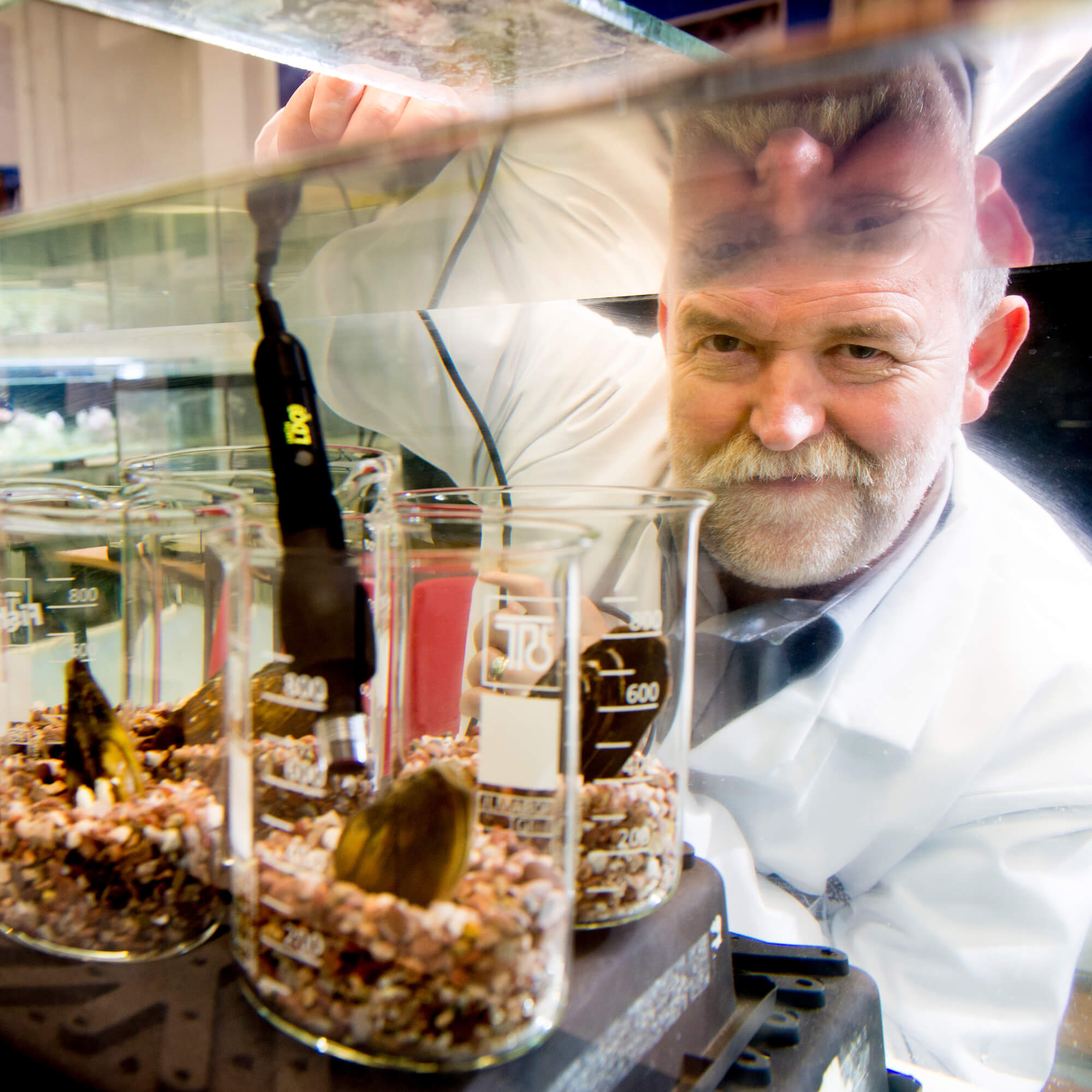 Dr Andrew Ramsey working in a lab with water crustacean.