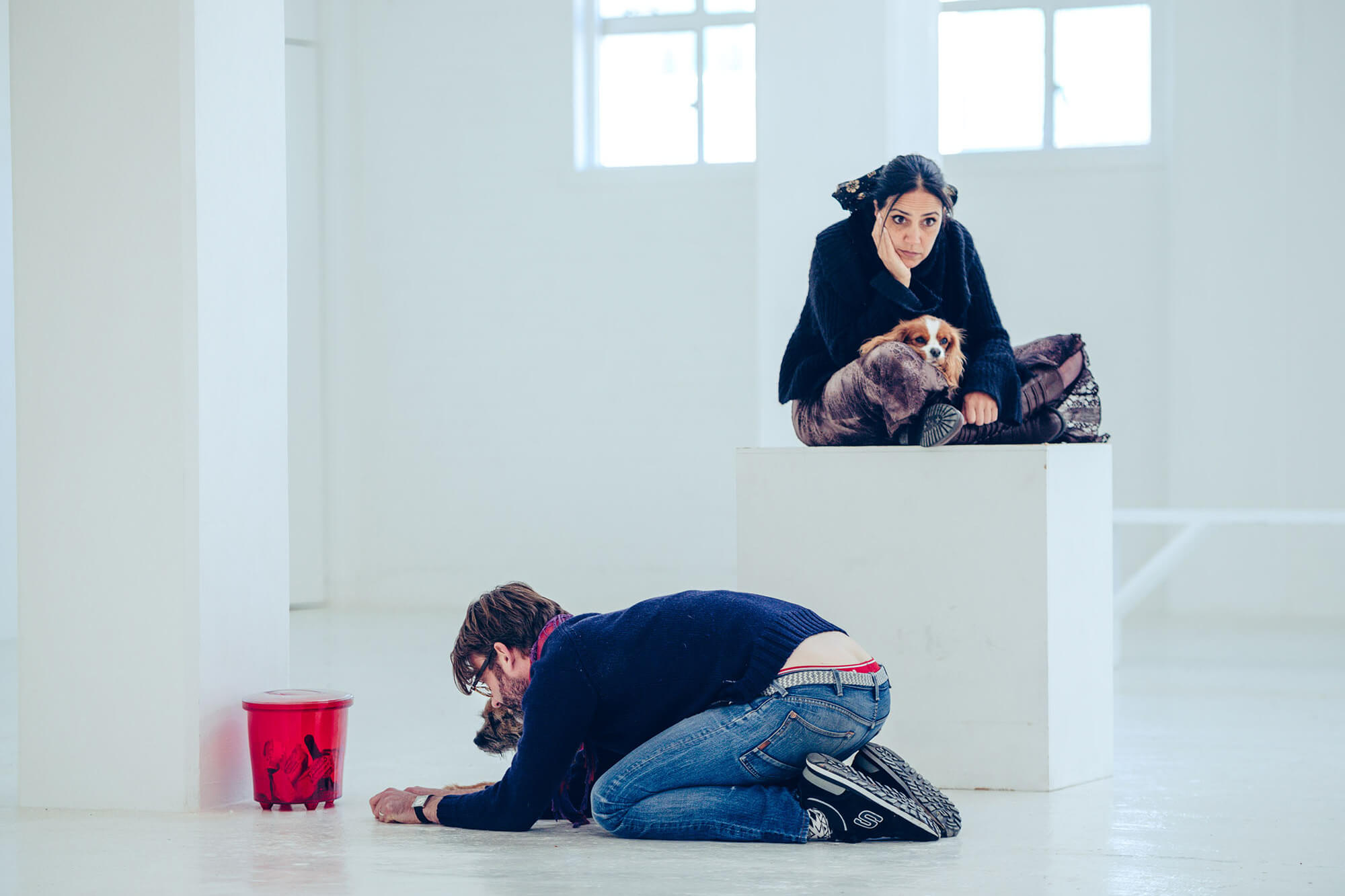 Two people sit in a white room next to dogs. One of them is kneeling.