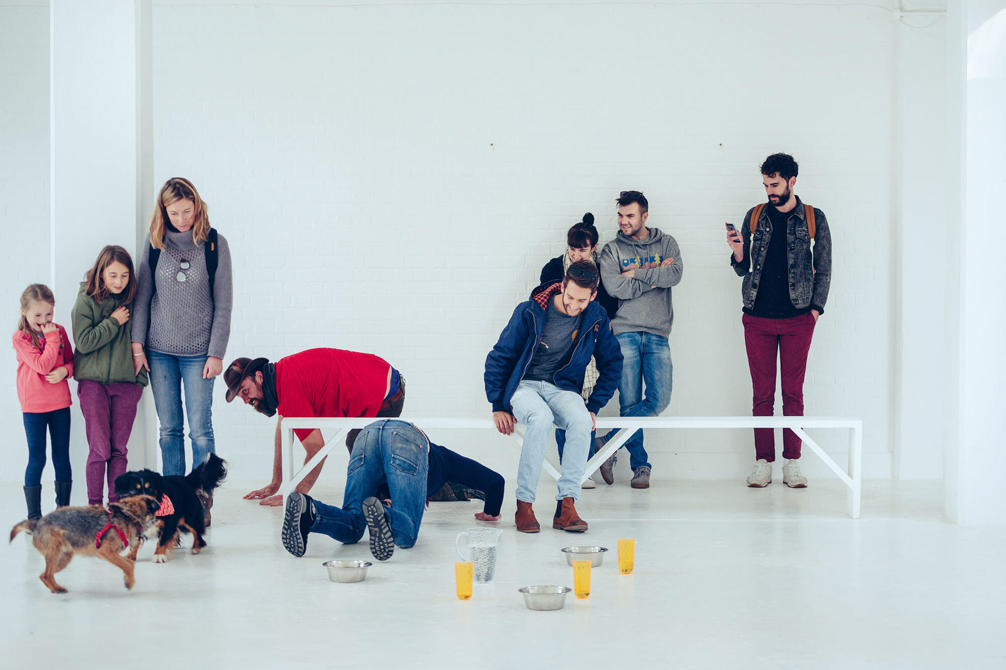 Group of people sitting and standing in a white room looking at two small dogs. Water bowls and jugs are laid out on the floor.