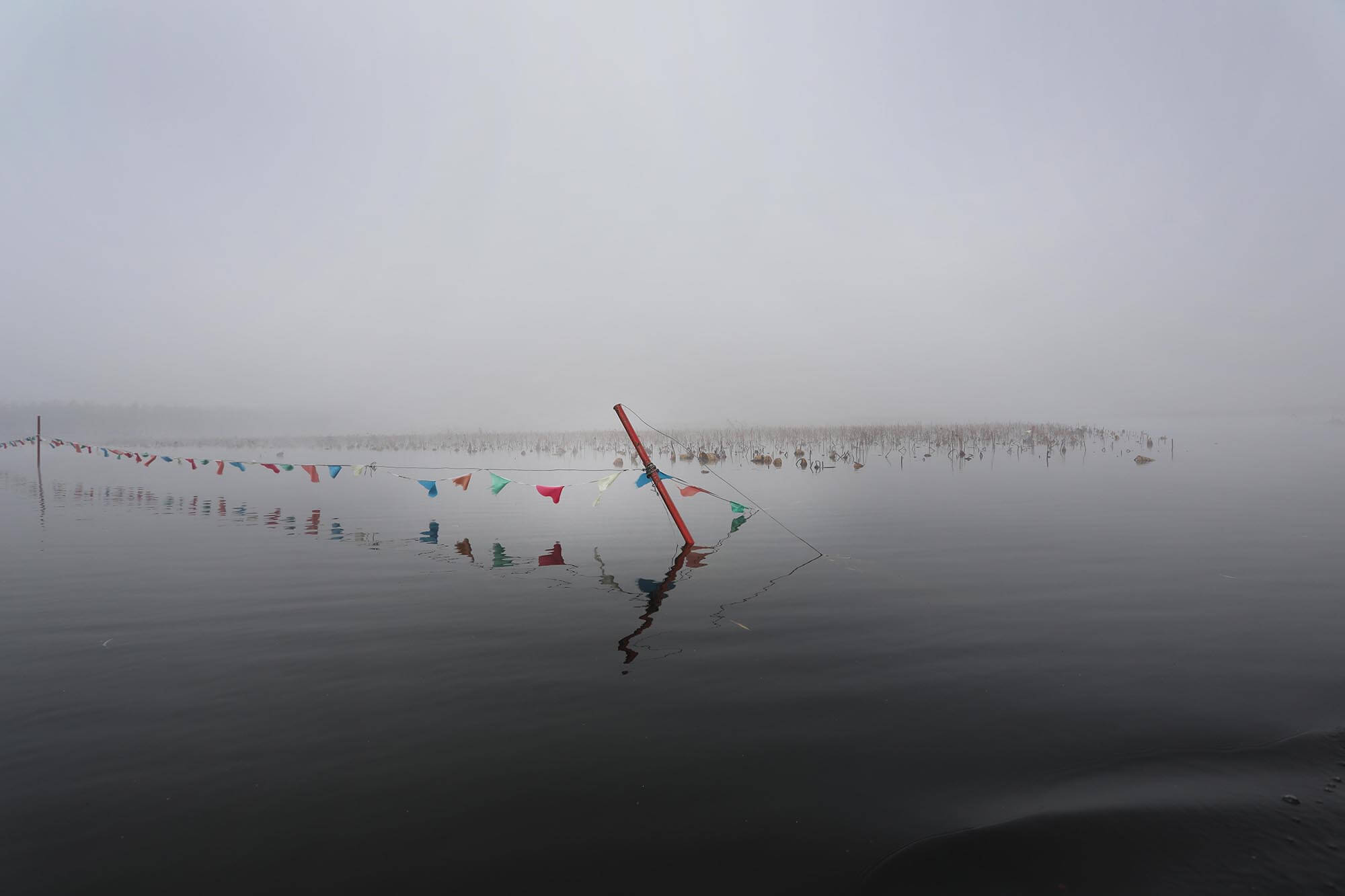 a line of small coloured flags is stretched between two posts in a broad, still, shallow lake. Rubbish sits among the reeds.